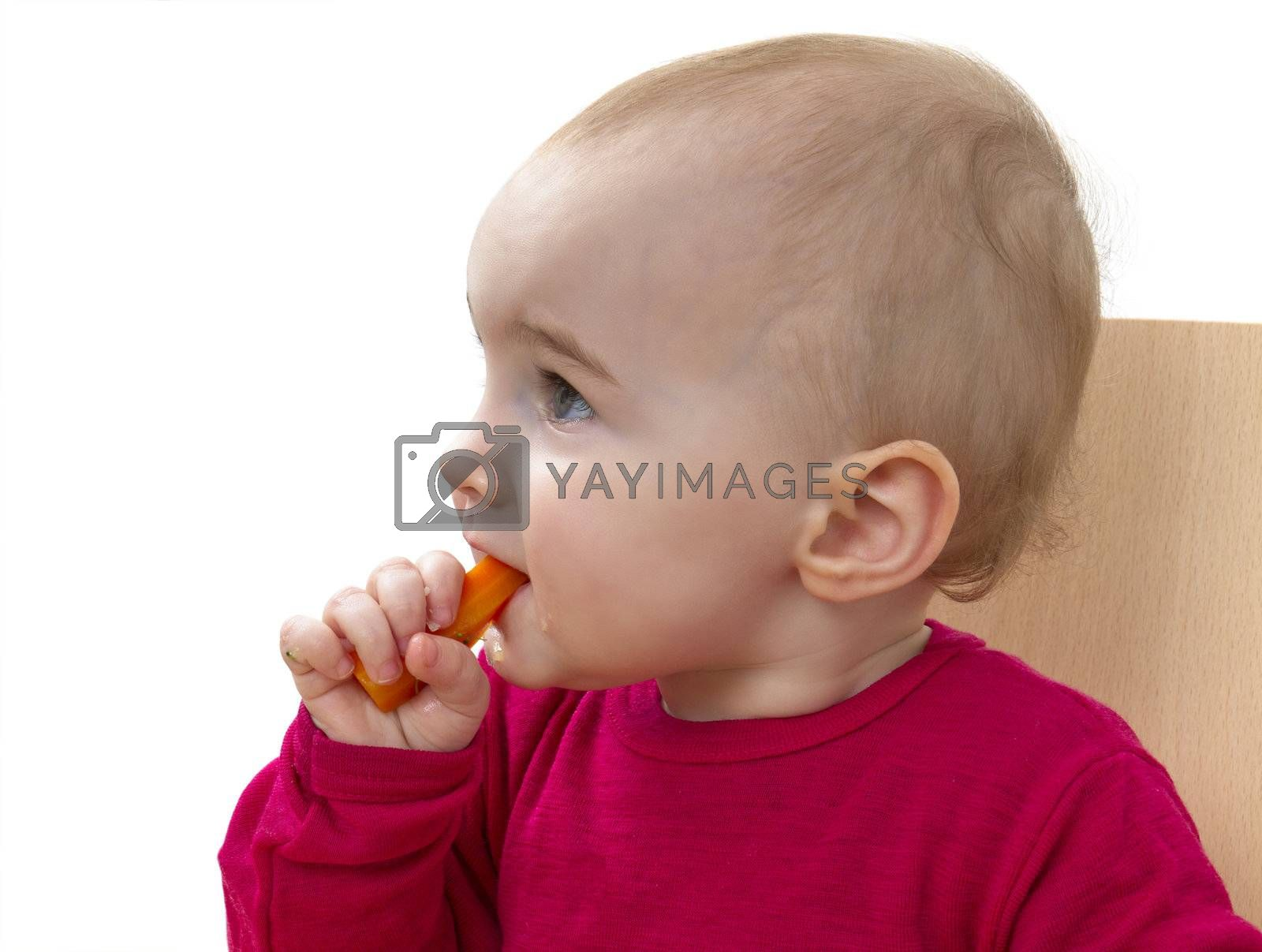 child in red shirt eating. white background