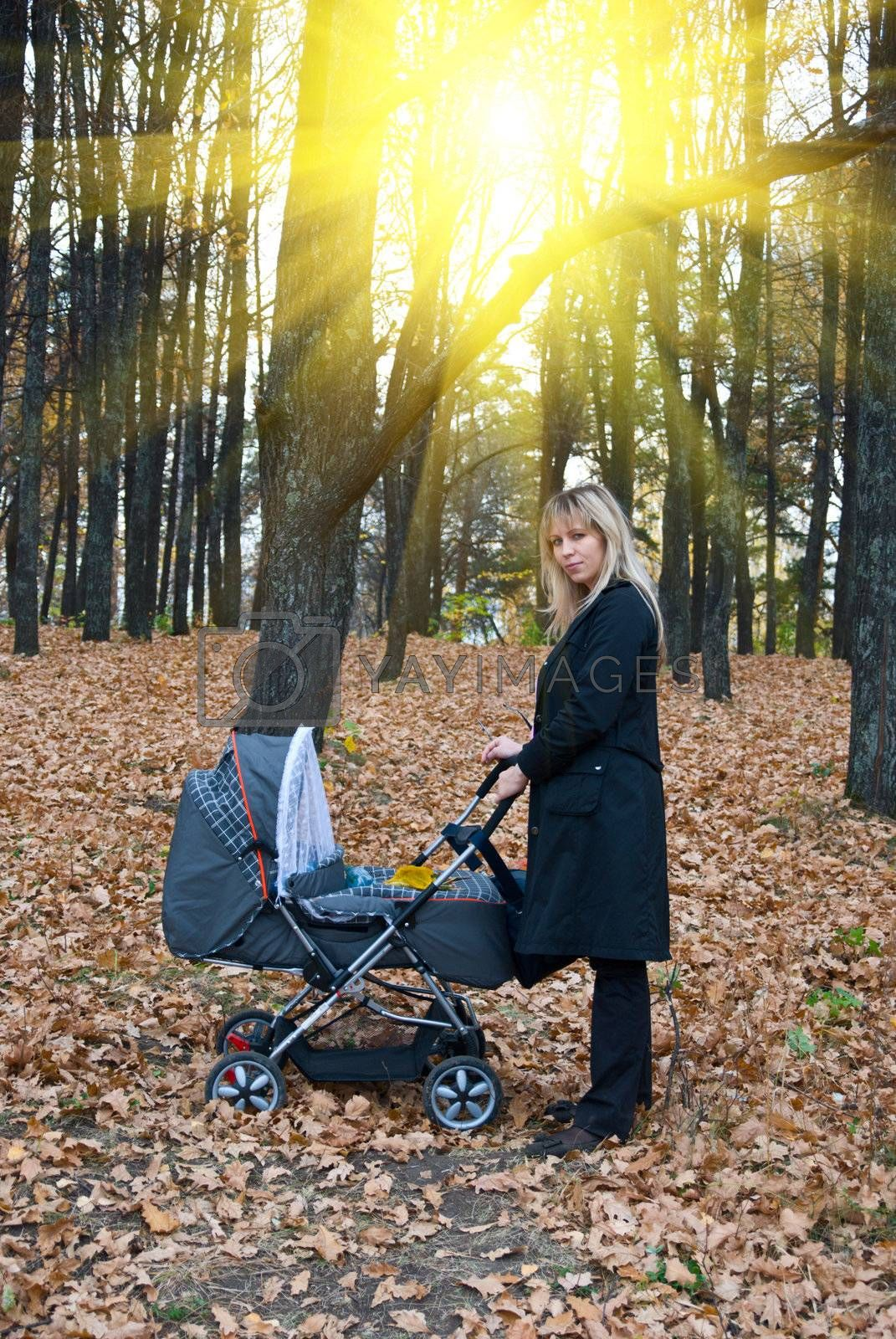 Mother with   baby carriage Walking at the Forest in autumn