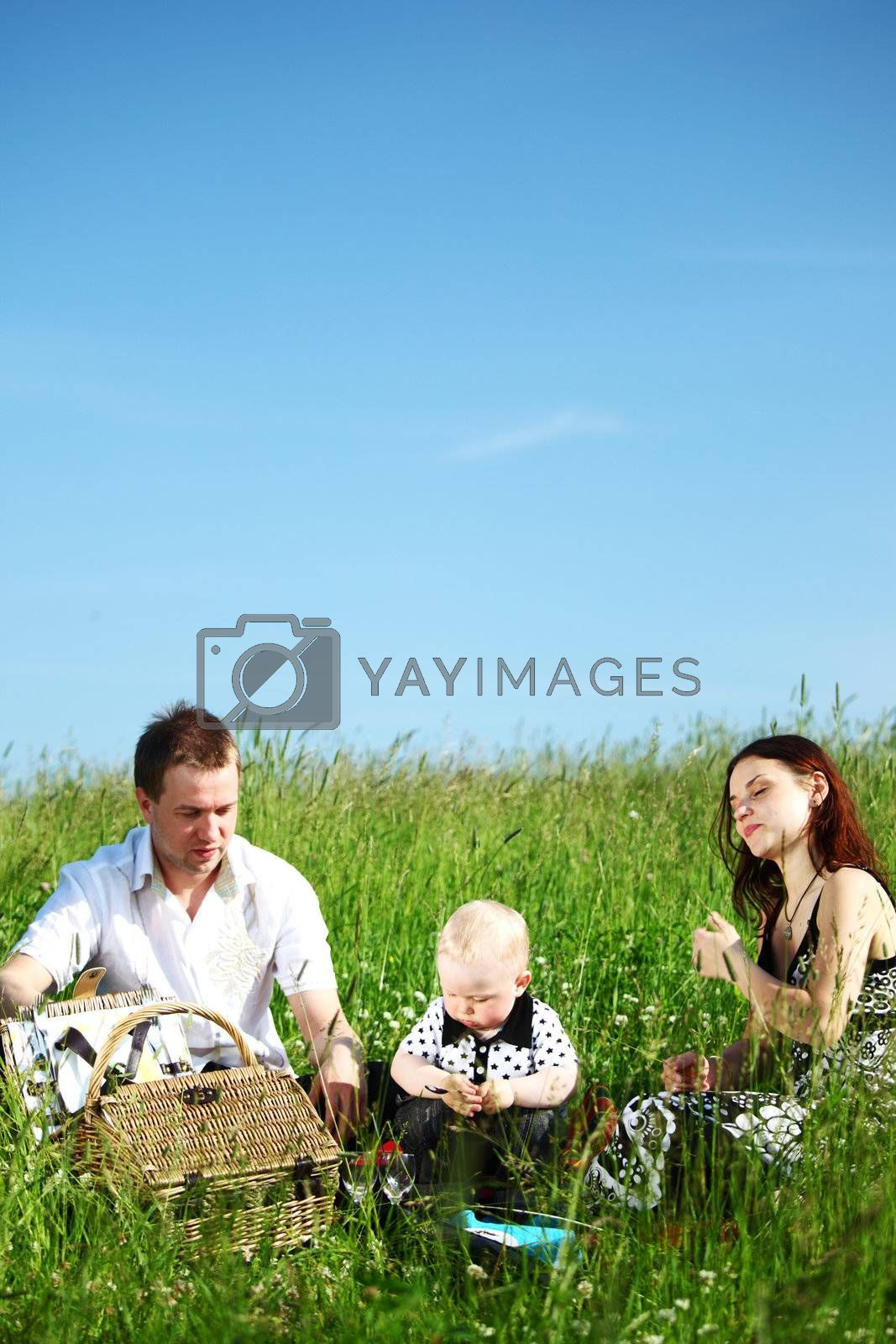 happy family on picnic in green grass