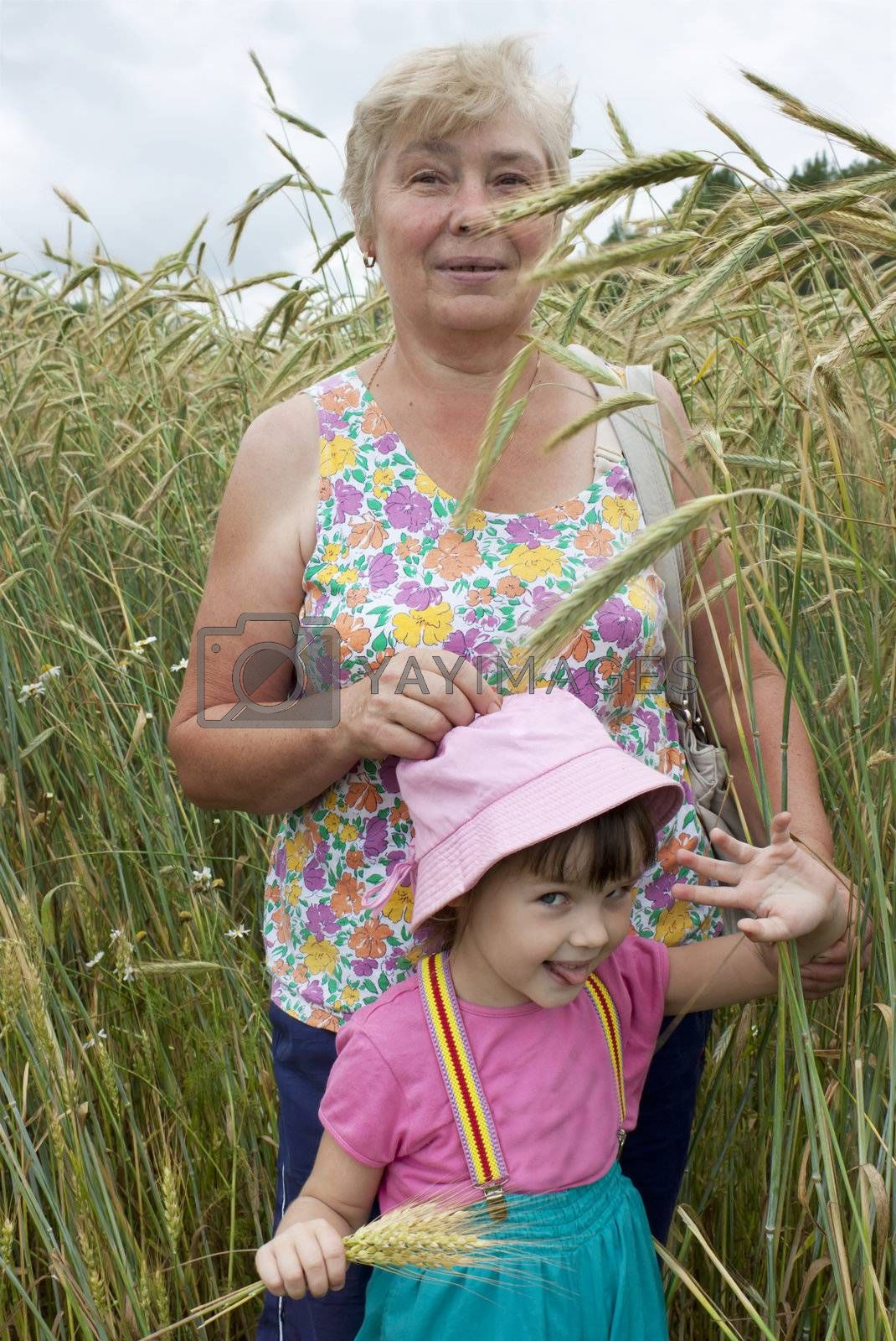The grandmother with the grand daughter on a rye field