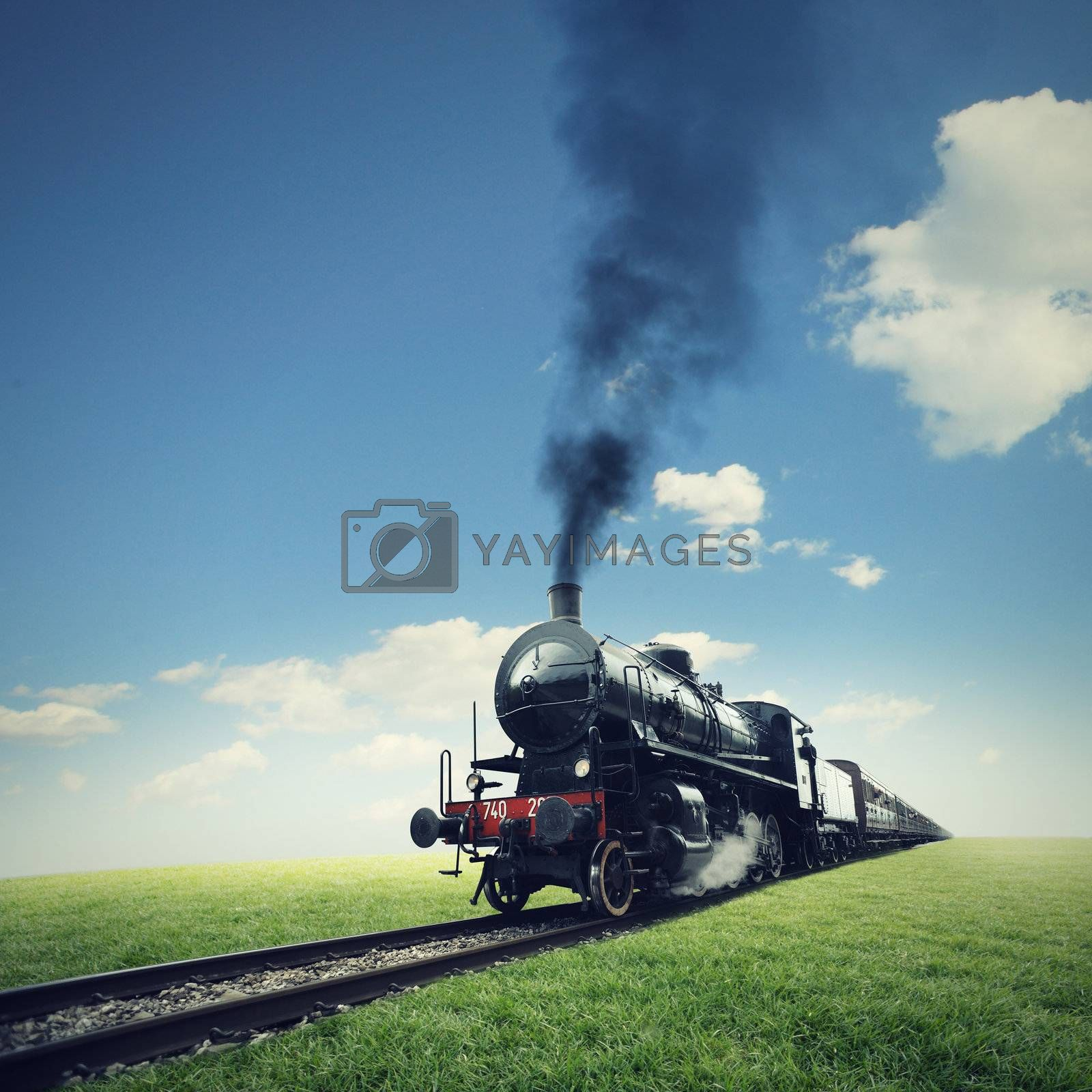 steam engine train crosses a green lawn