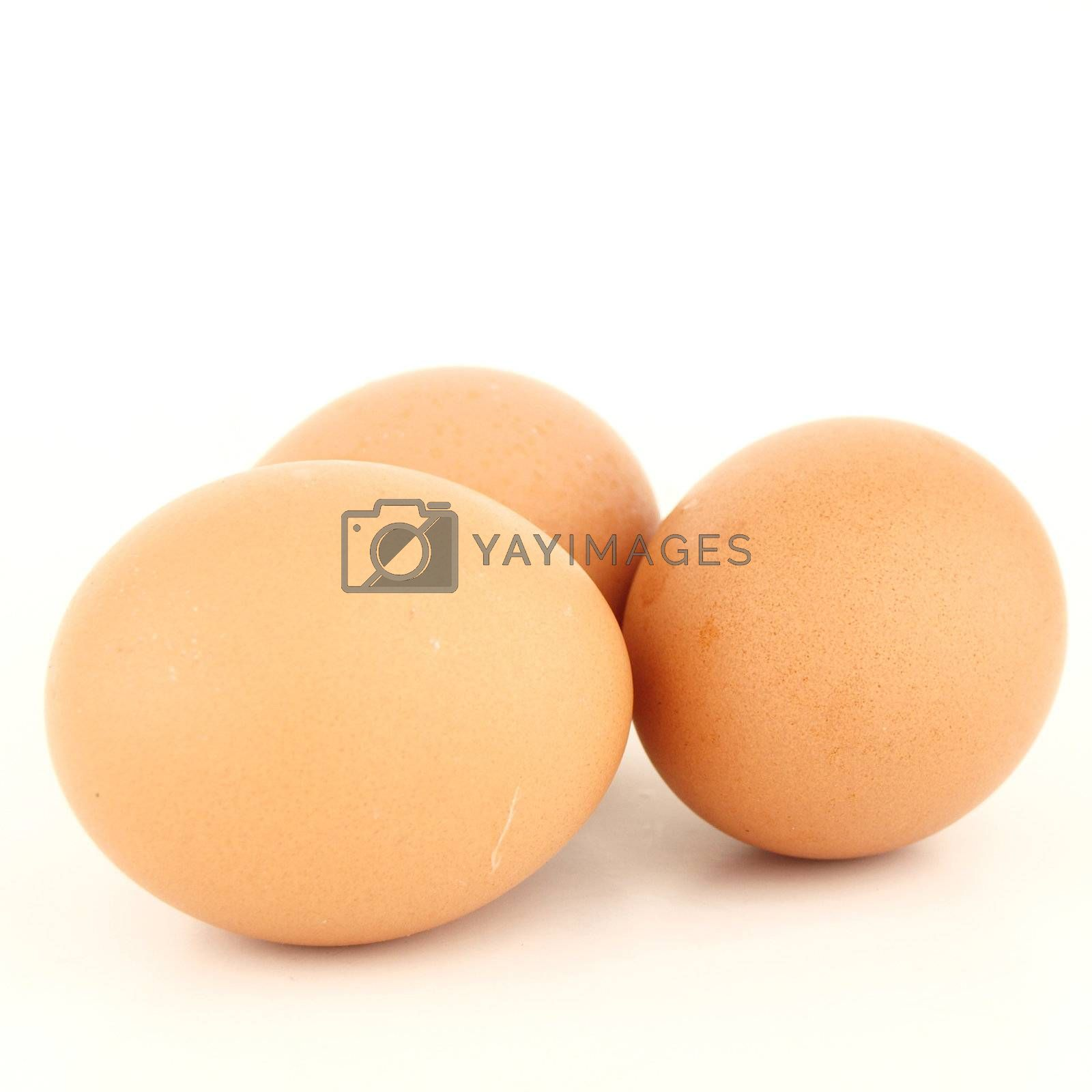Three brown eggs isolated on white background