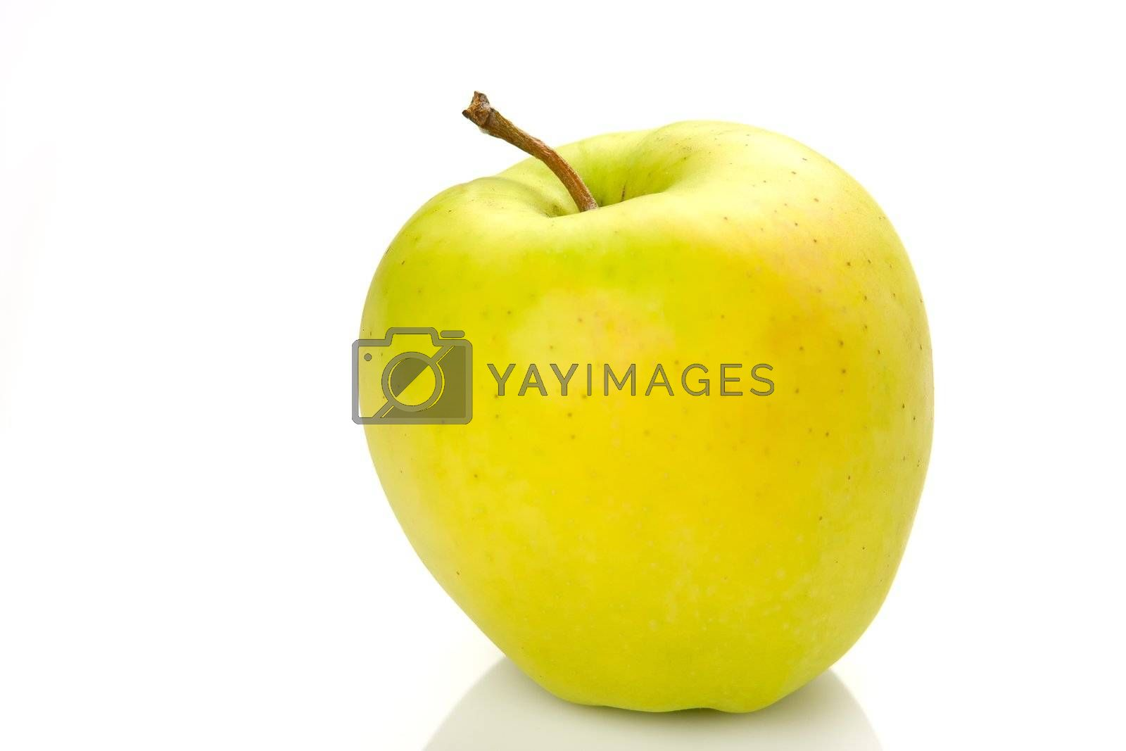 big apple isolated on a white background