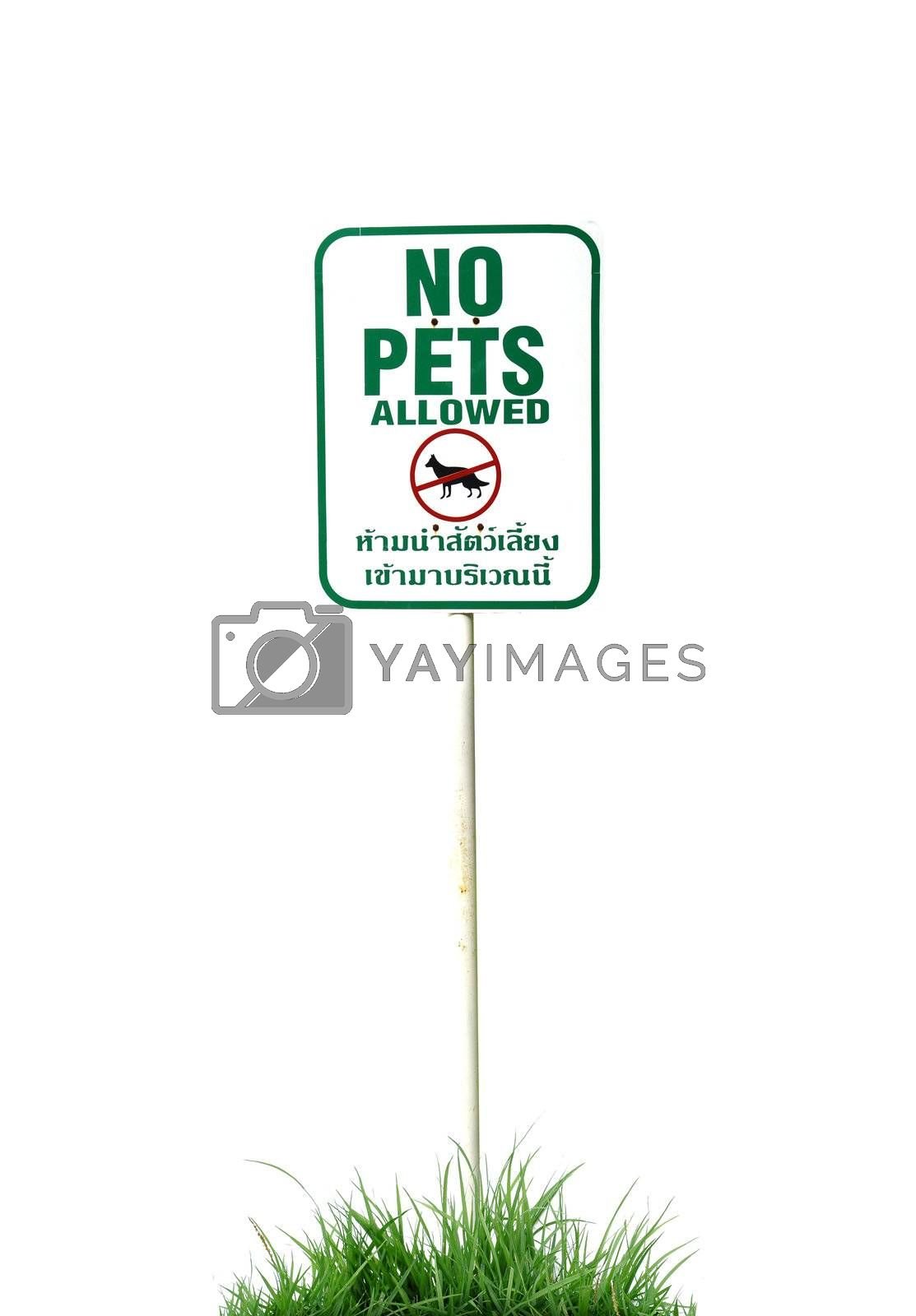 no pets allowed sign isolated