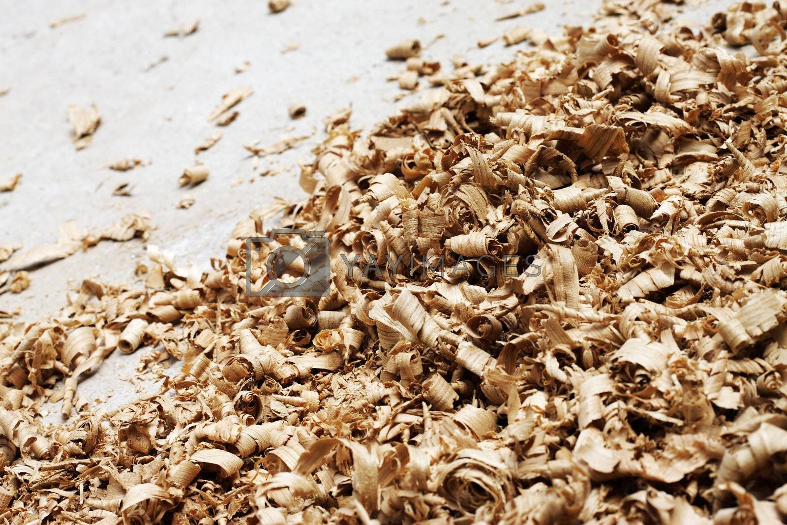 close up of a wood shavings
