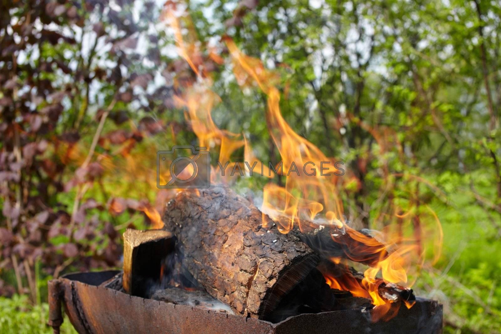 Fire flame by Nikonas