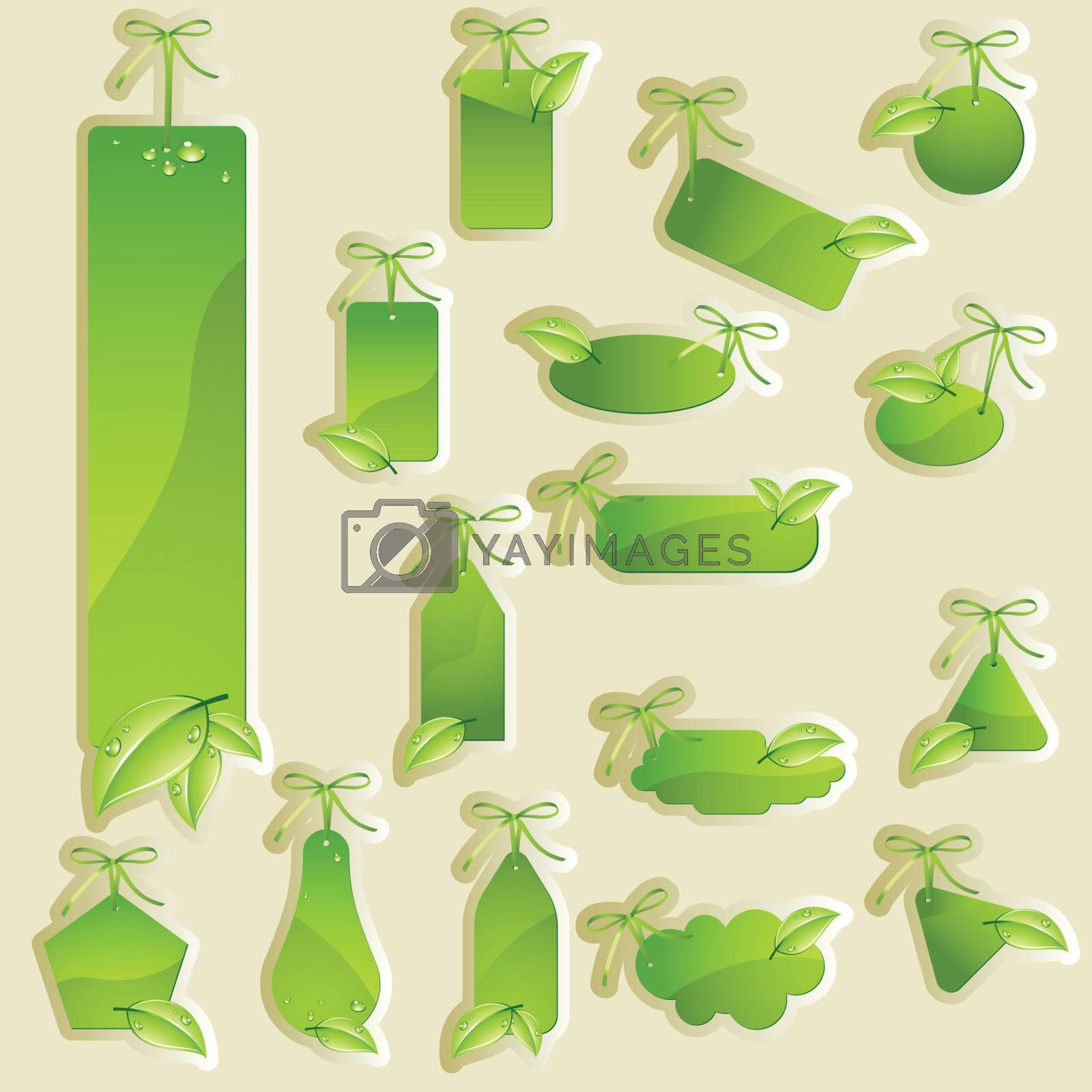 Collection of vector green labels, green tag