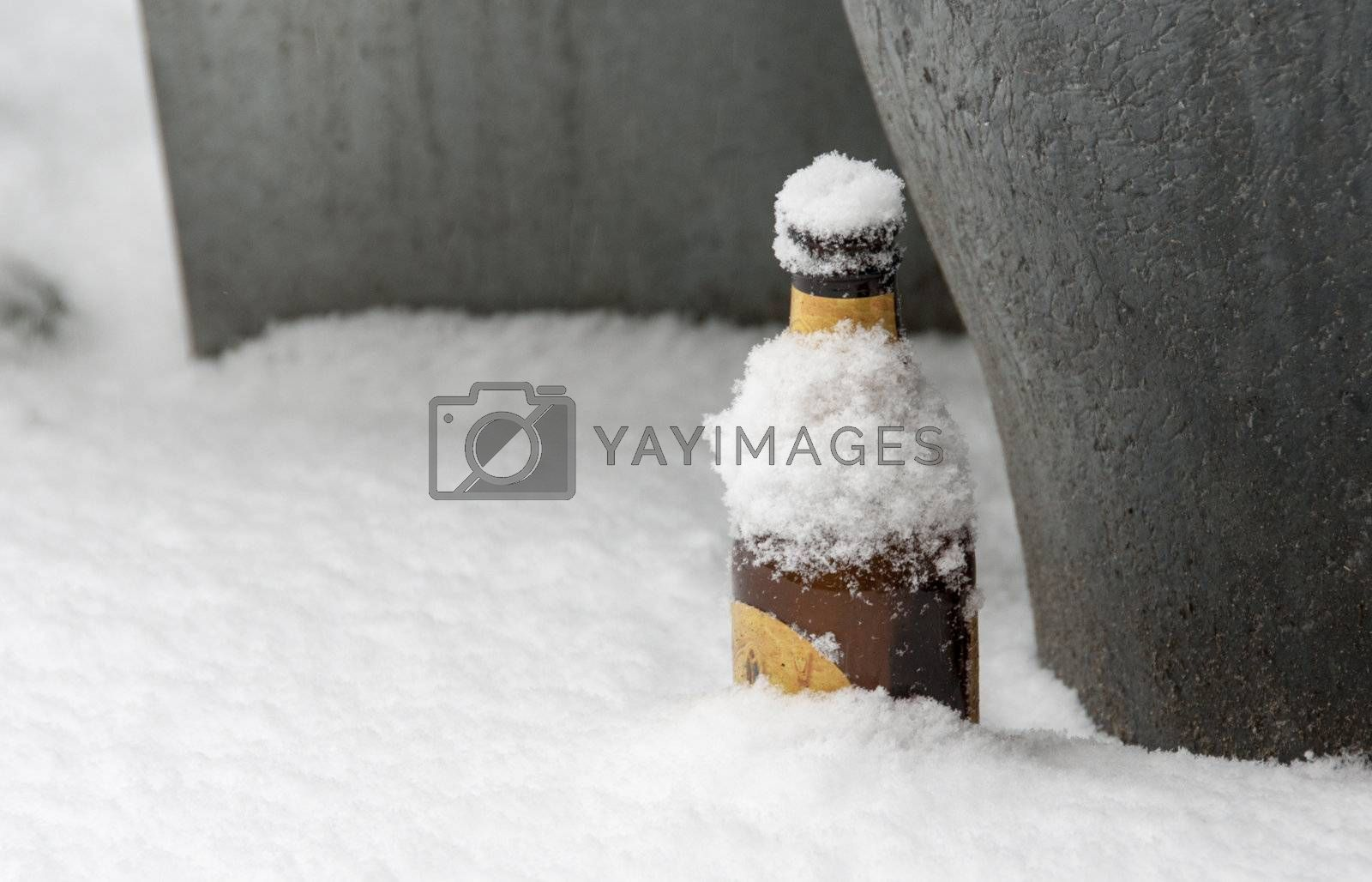 ice cold drink in the whiote snow