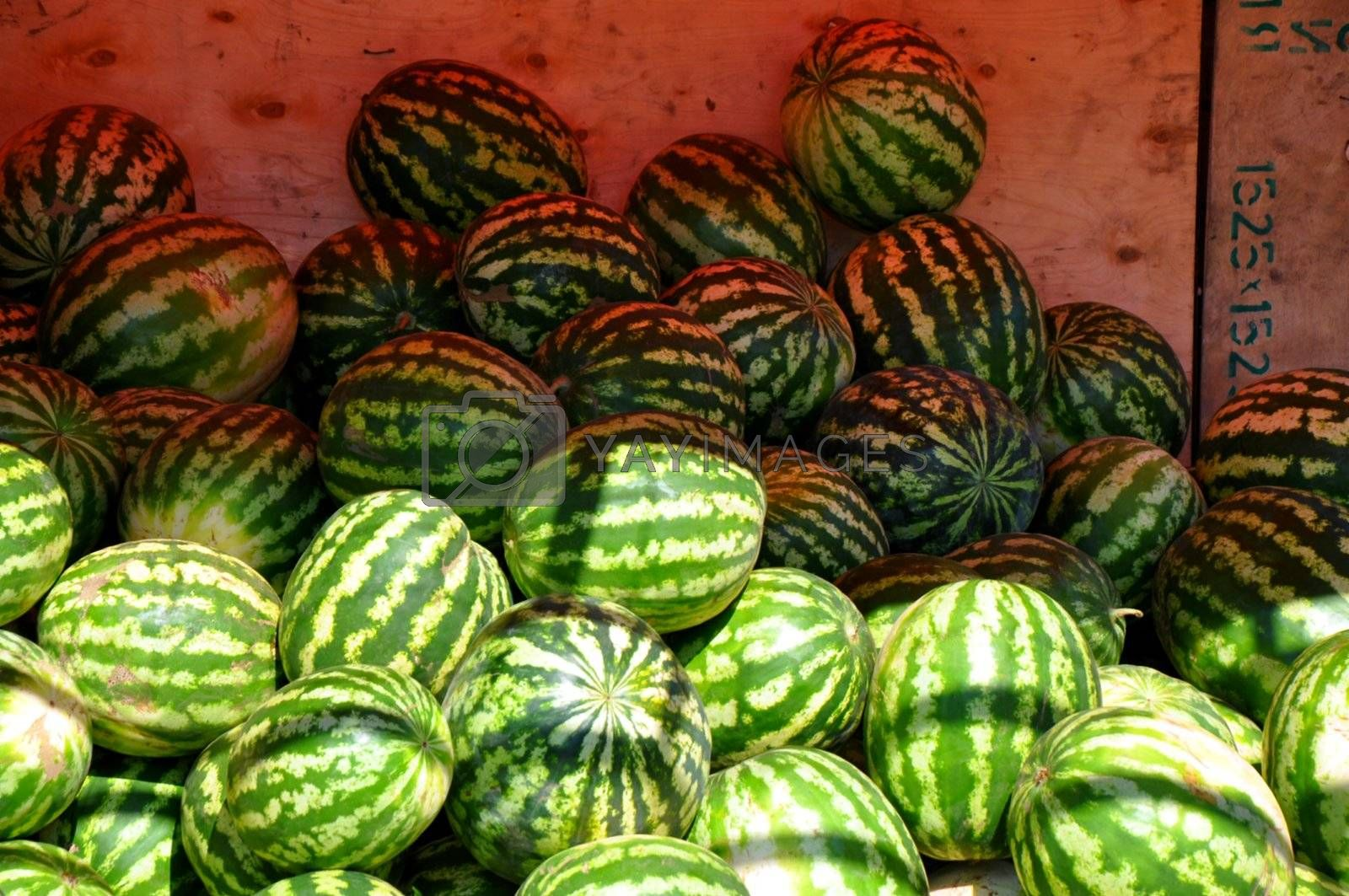 Selling watermelon on the Bazaar