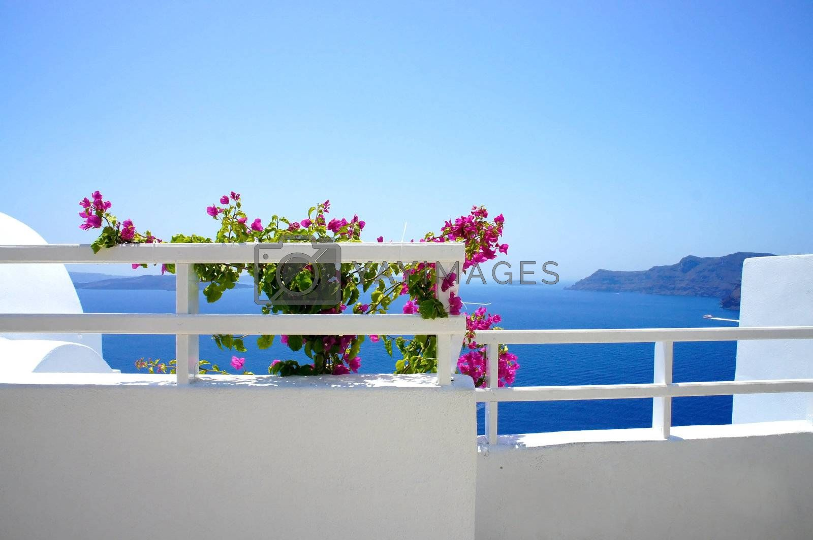 Santorini terrace with flowers, Greece