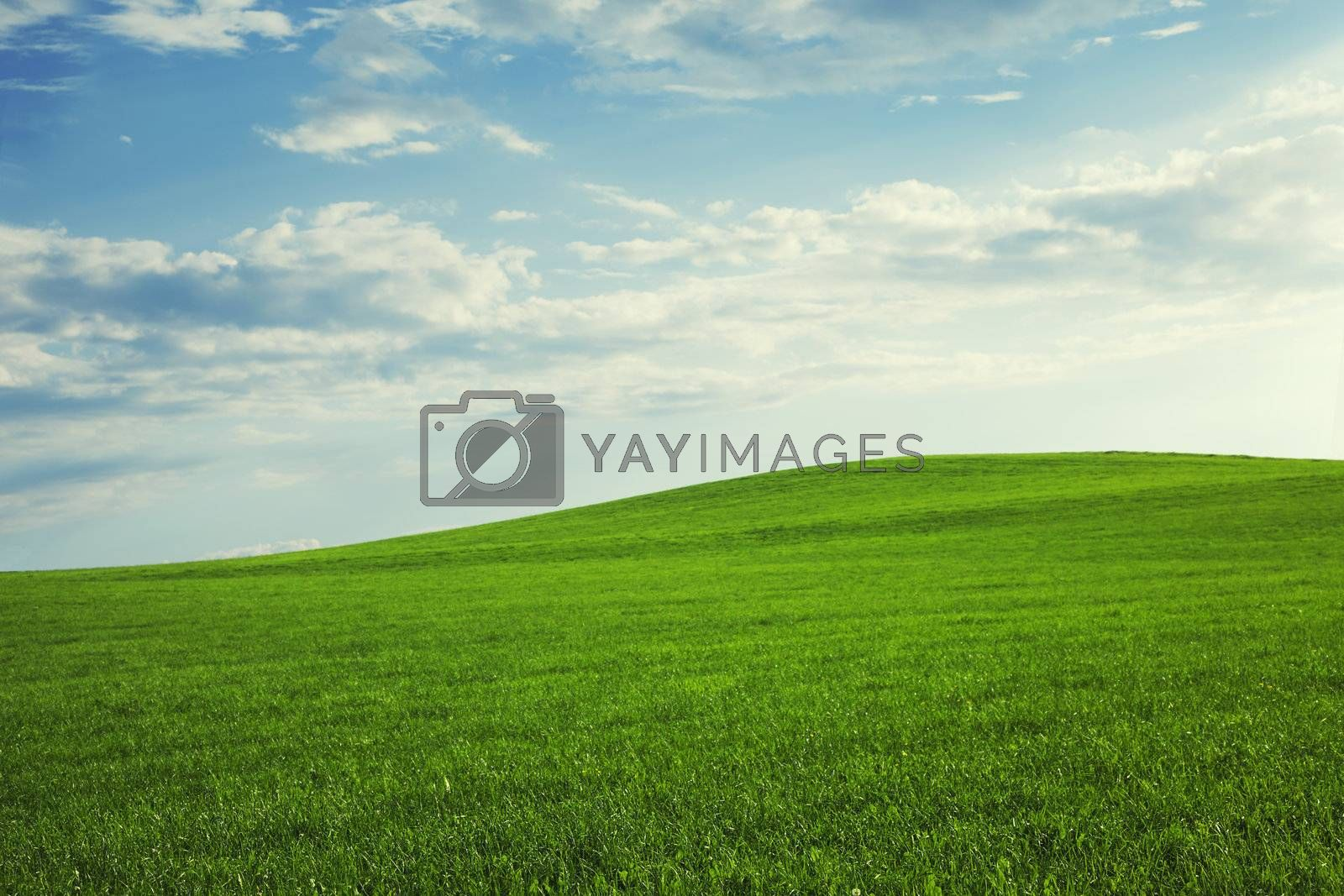 beautiful hill landscape with green meadow and blue sky