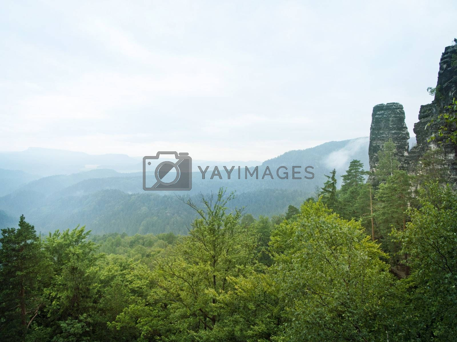 mountains of Czech Switzerland with green forests