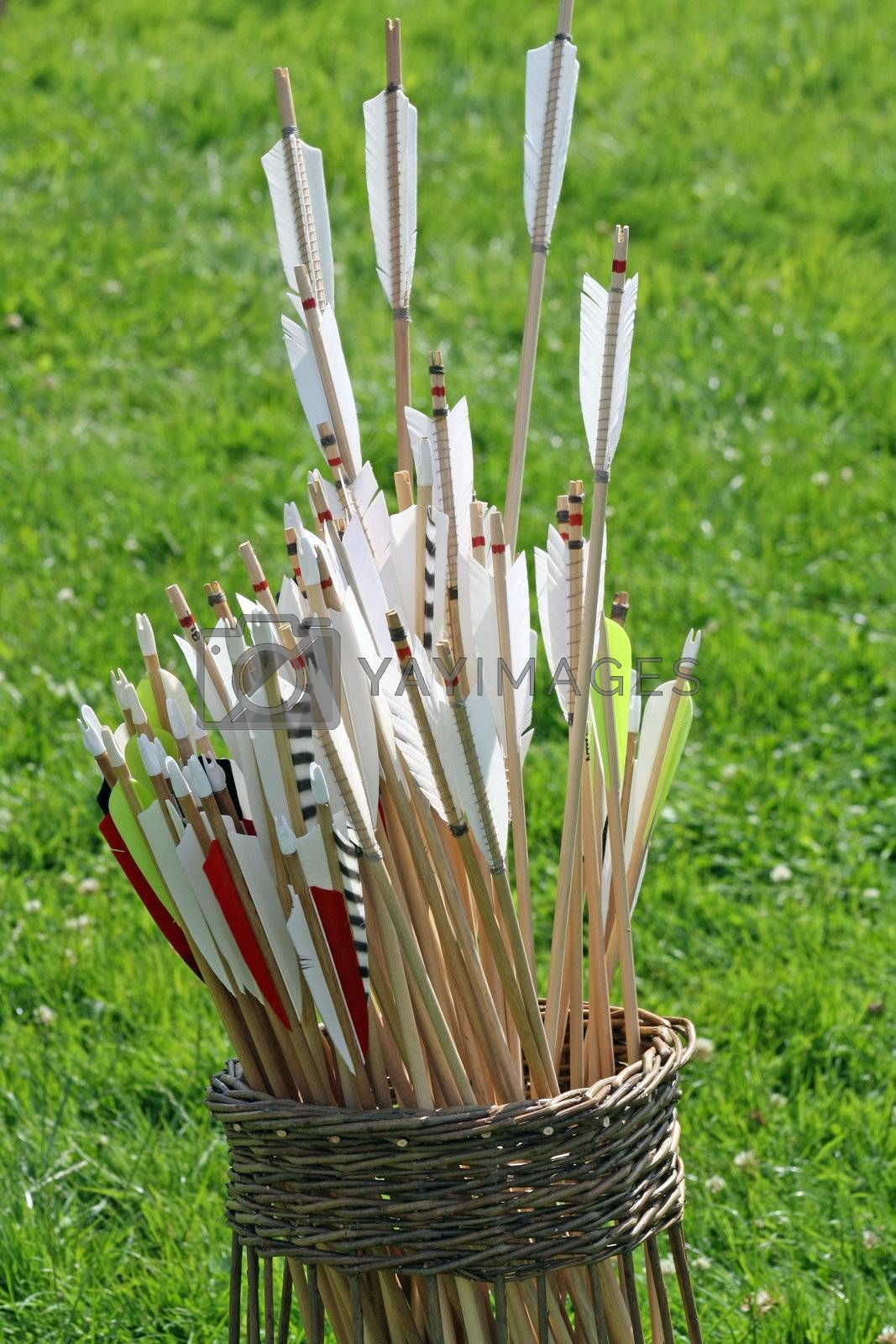 a basket of arrows