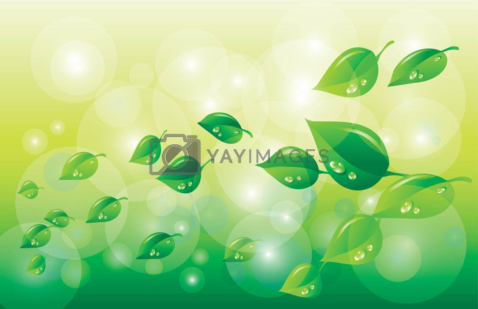 Green and Spring background
