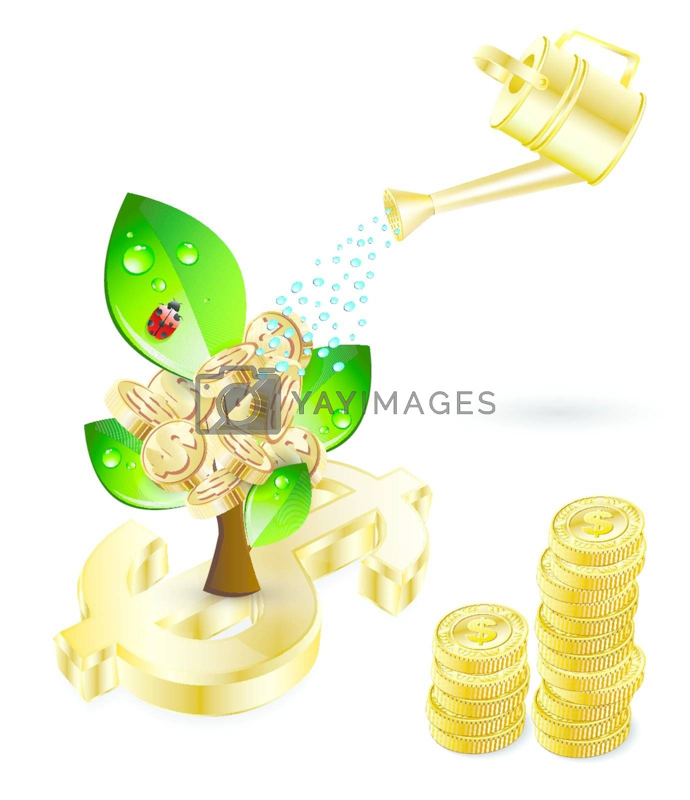 tree with green leafs and money and blue watering investment concept theme over white