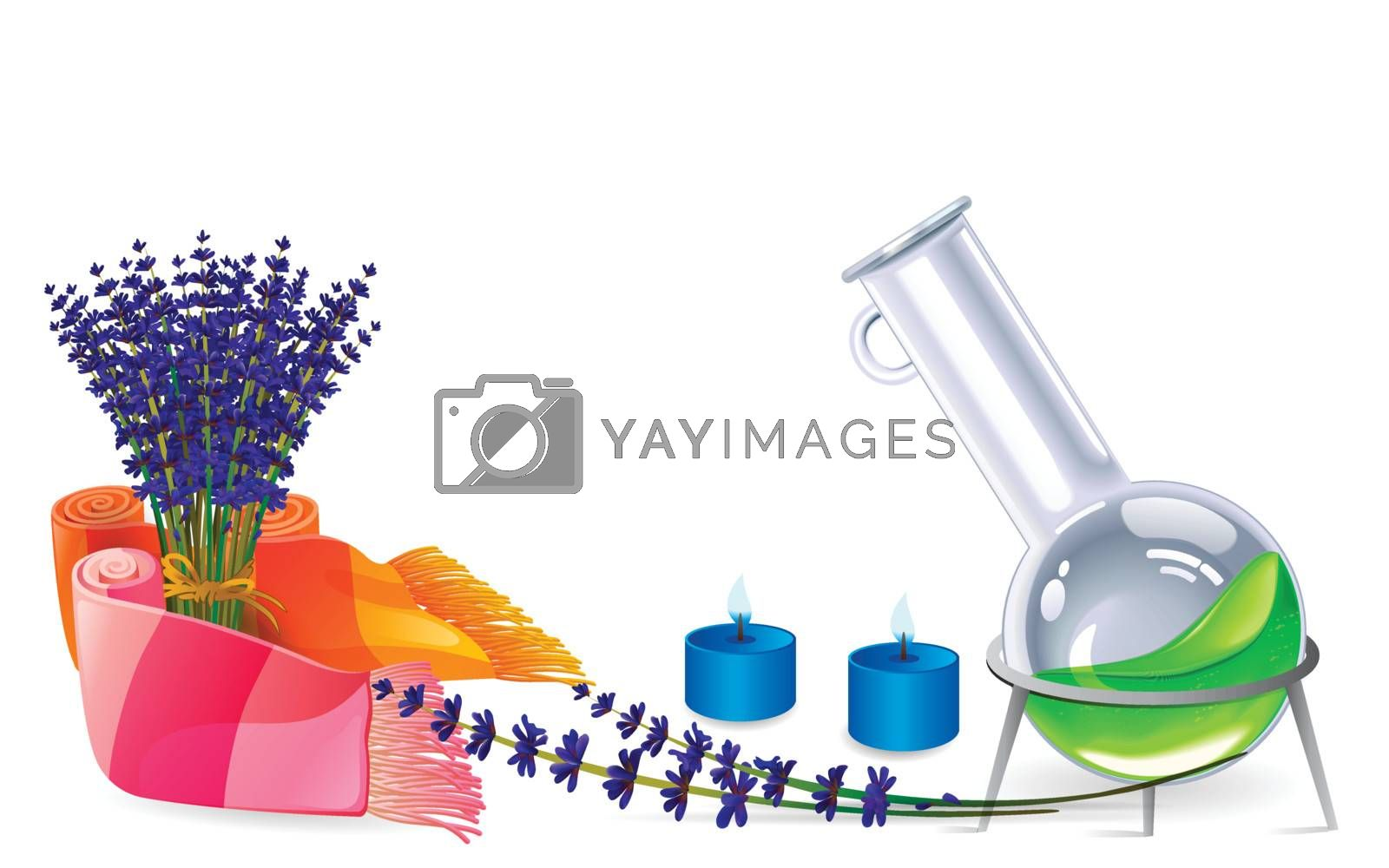 lavender flower and aromatherapy illustration on isolated