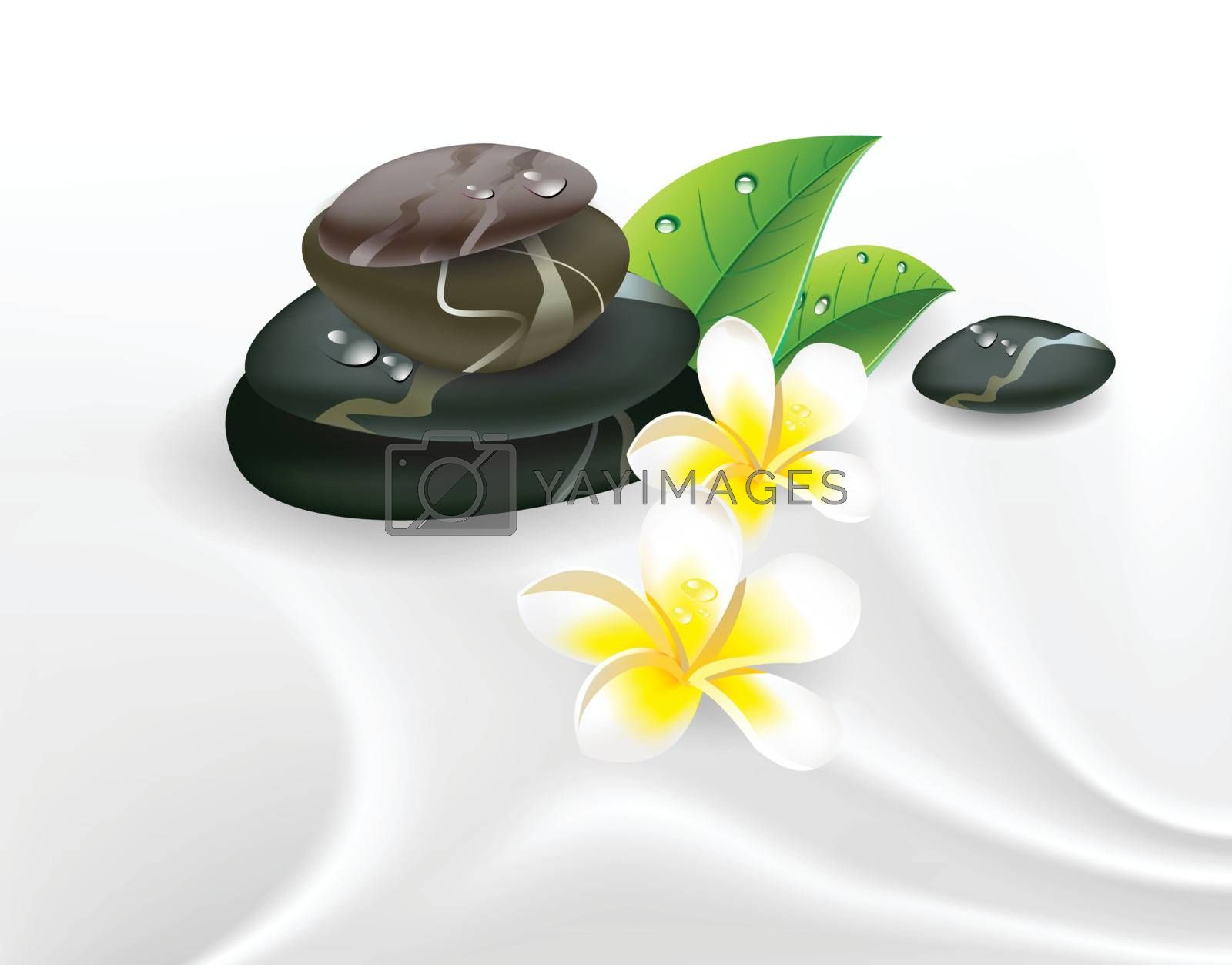illustration spa stones and frangipani on silk.