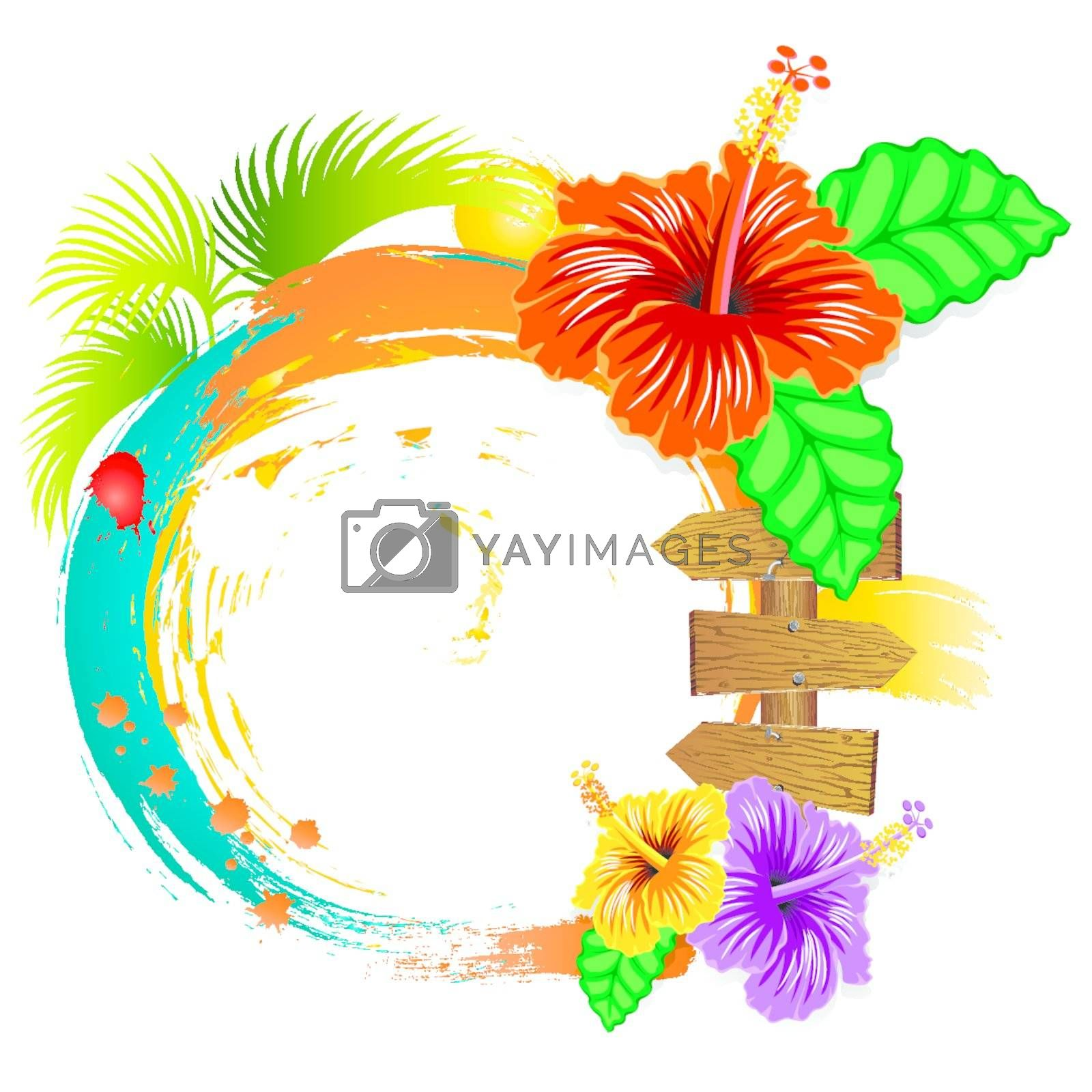 Hibiscus flowers and summer frame on white background.