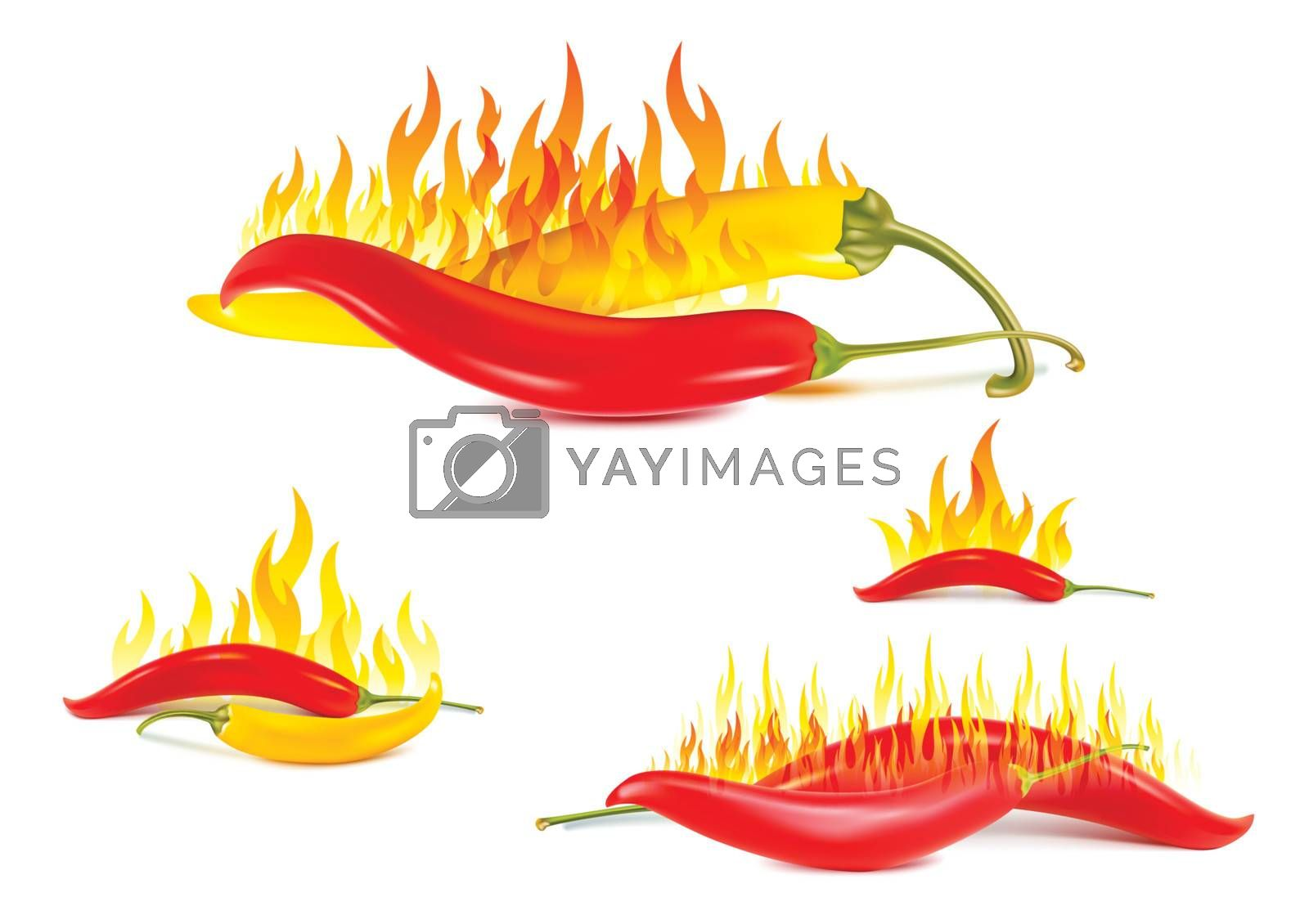 yellow and red hot chili pepper