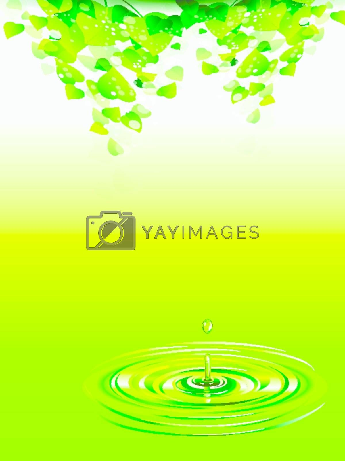 Fresh green leaves above the water background
