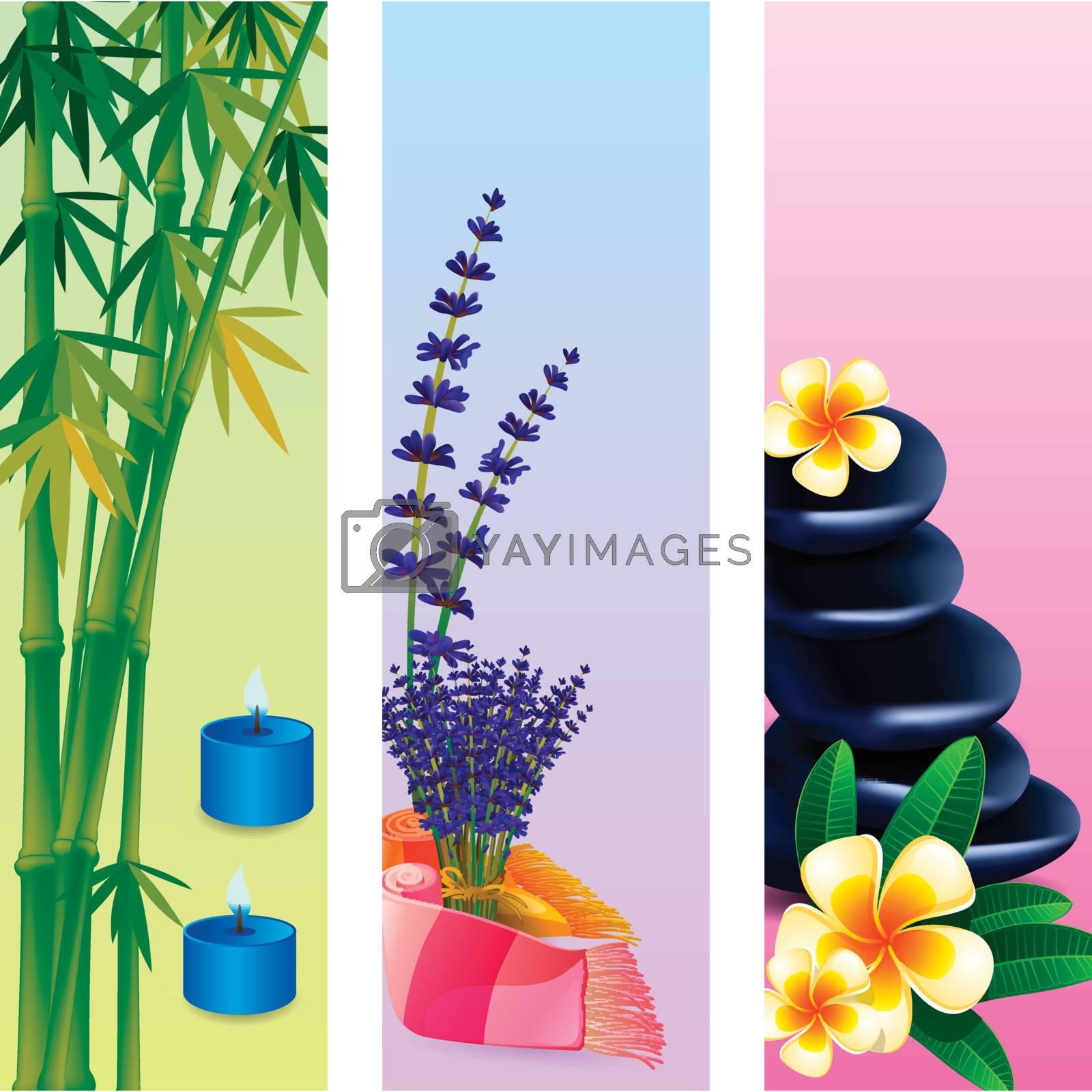 Bamboo Stone Spa Frangipani Lavender banner set