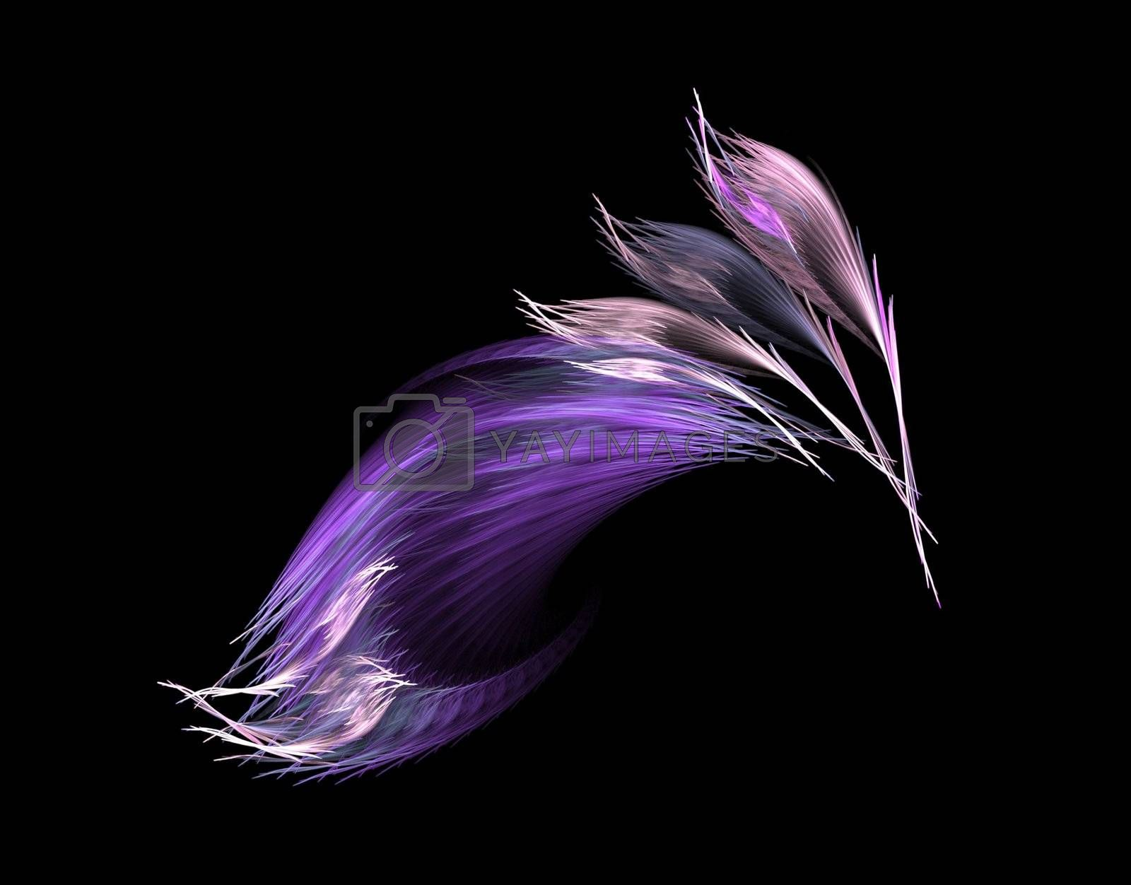 violet feathers to the infinity - fractal graphics