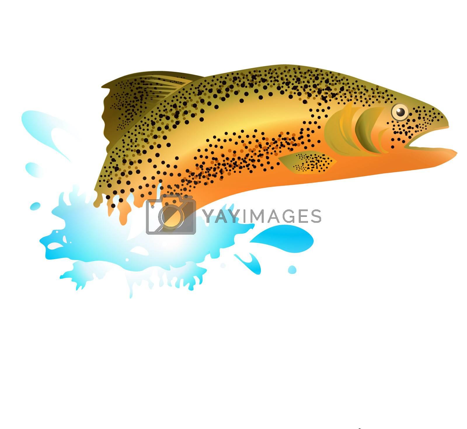 Salmon In Blue Water Splash Over White Background
