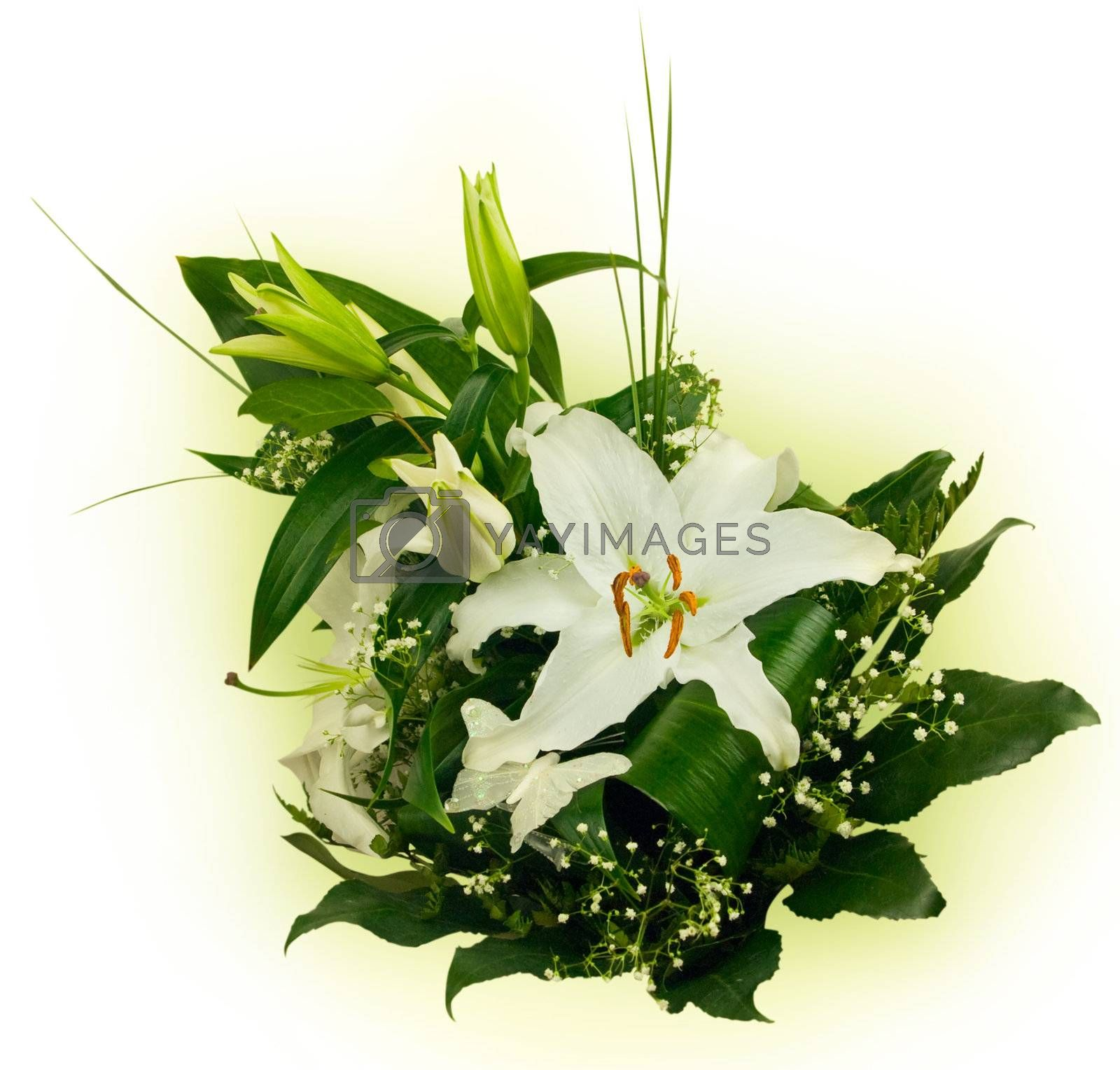 bouquet of lilies and green leaves over white