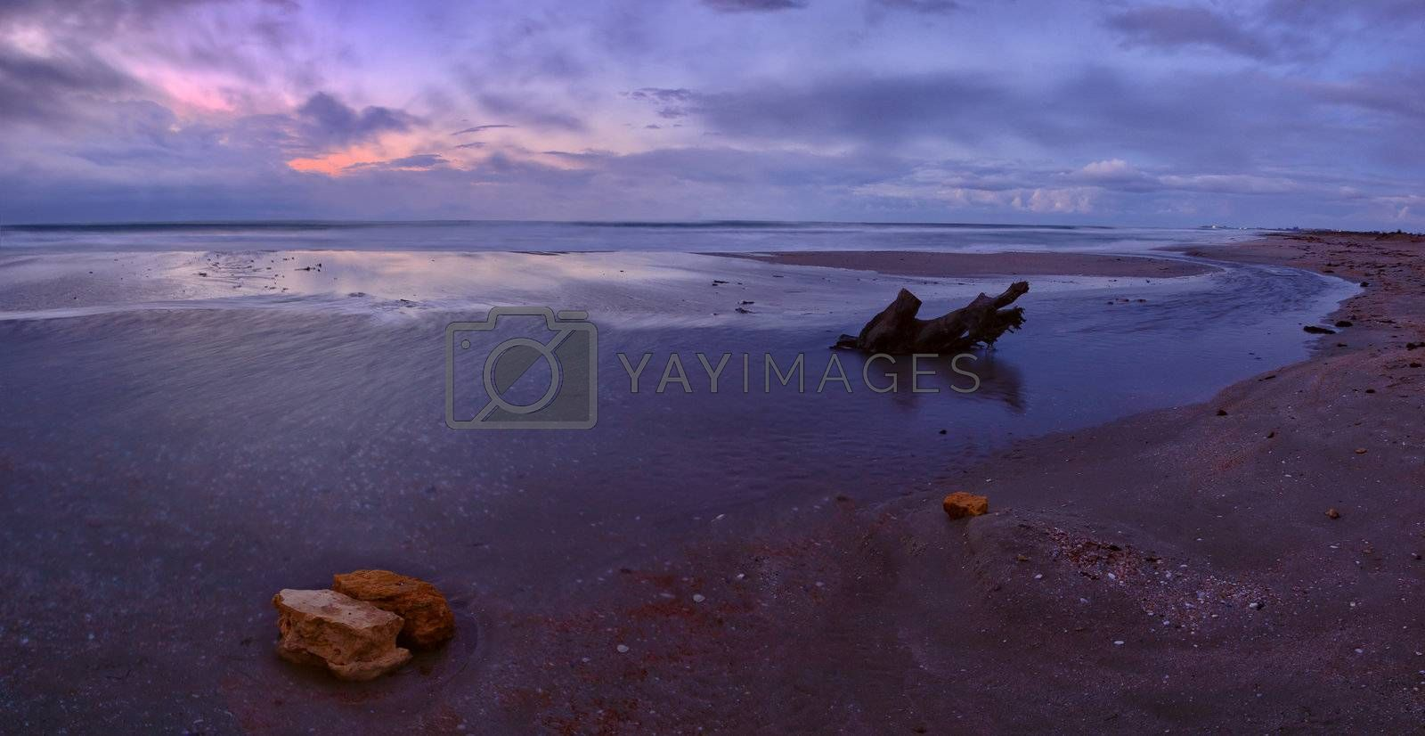 Beautiful decline on the sea coast, rock and snag on sand, majestic clouds, panorama