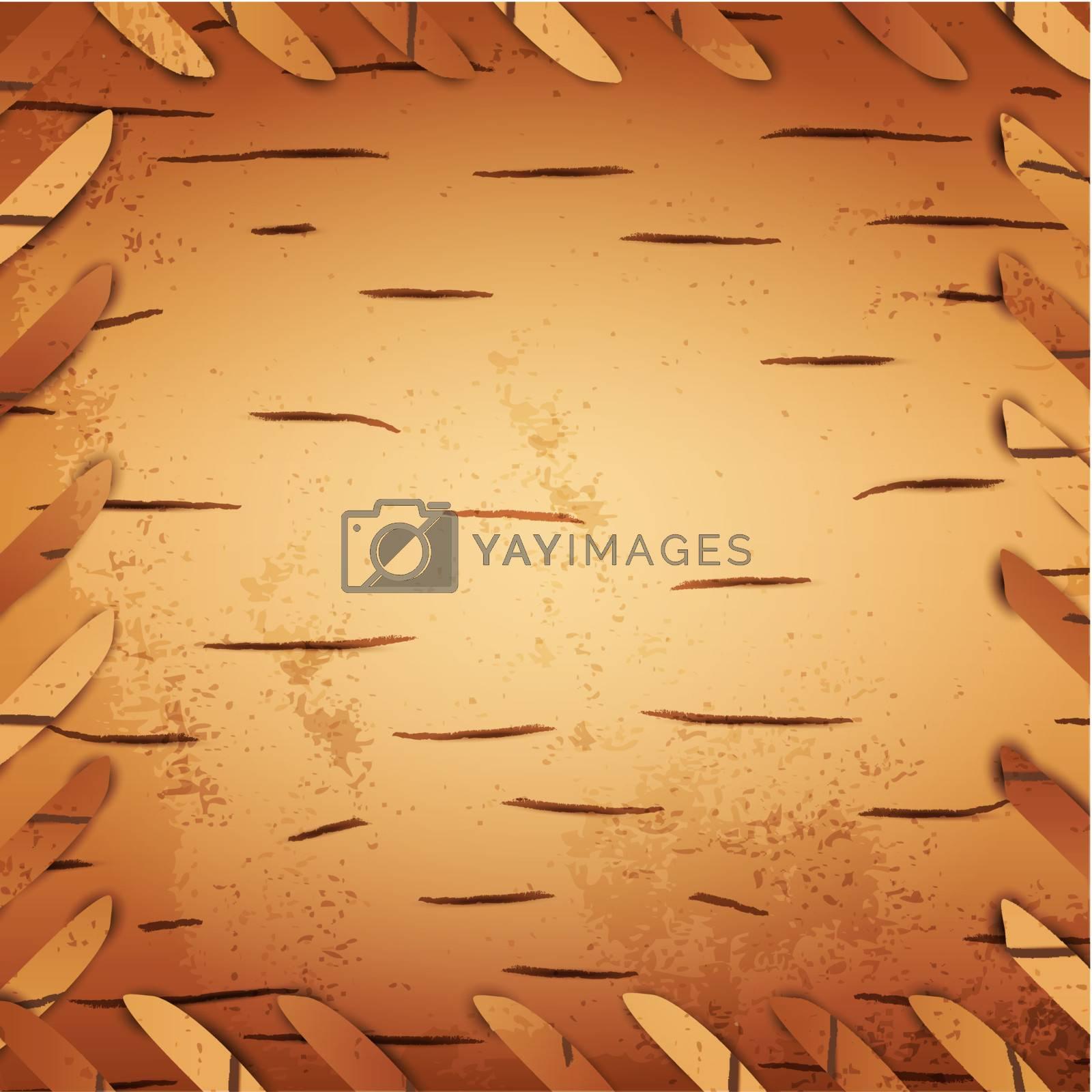 bark birch background, copyspace