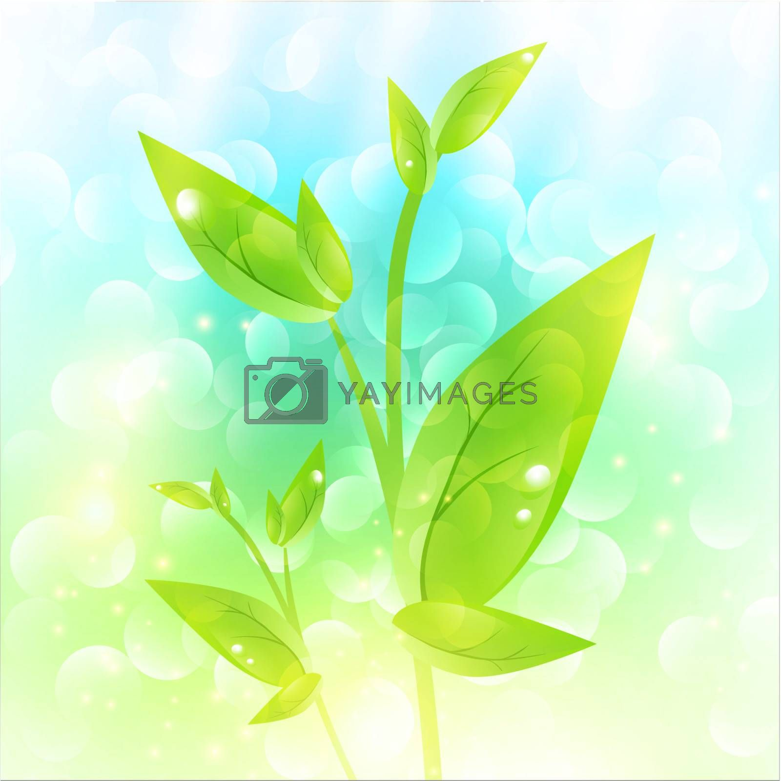 Green sprout with drops at leaves over fresh natural background