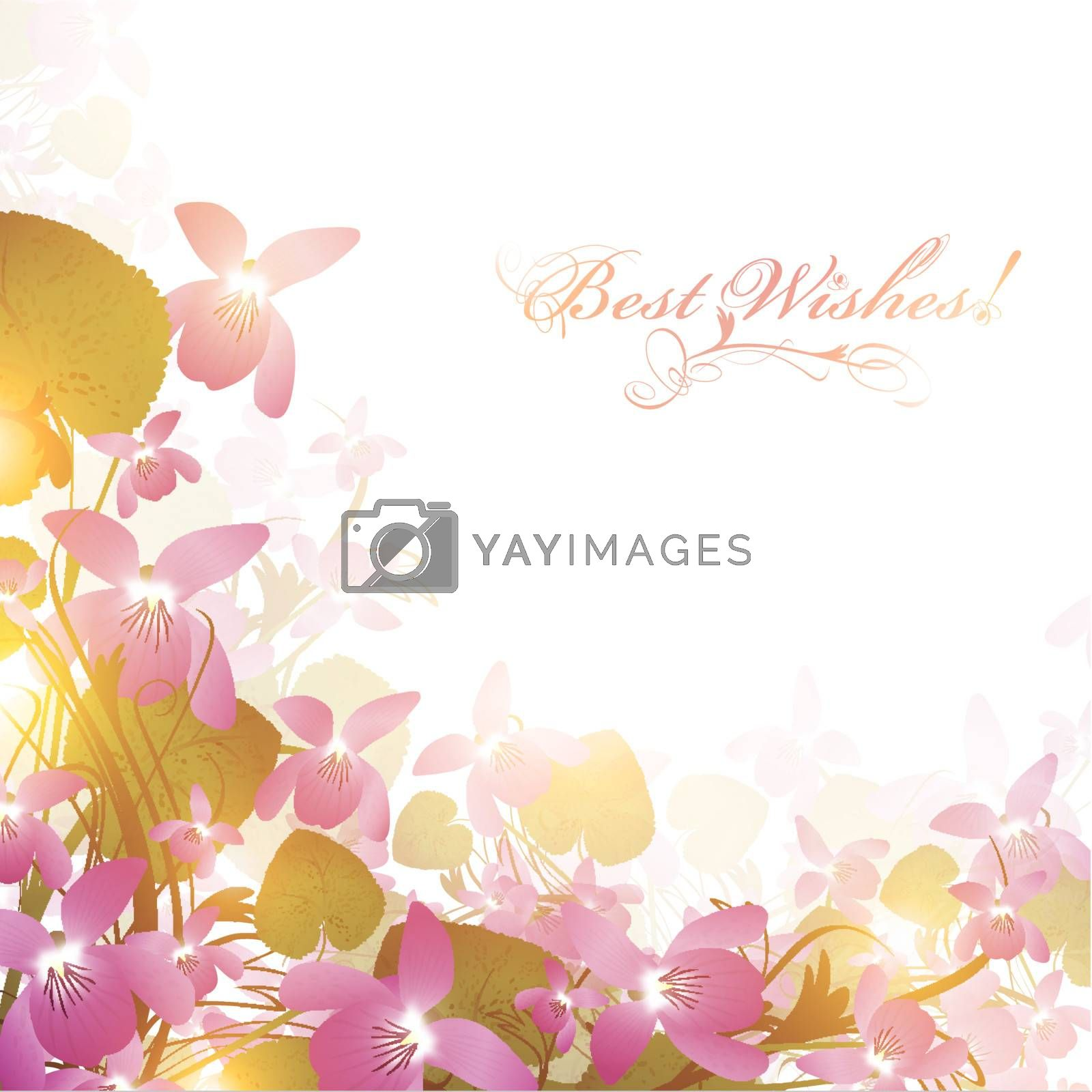 holiday border of wild violet over white background, copyspace