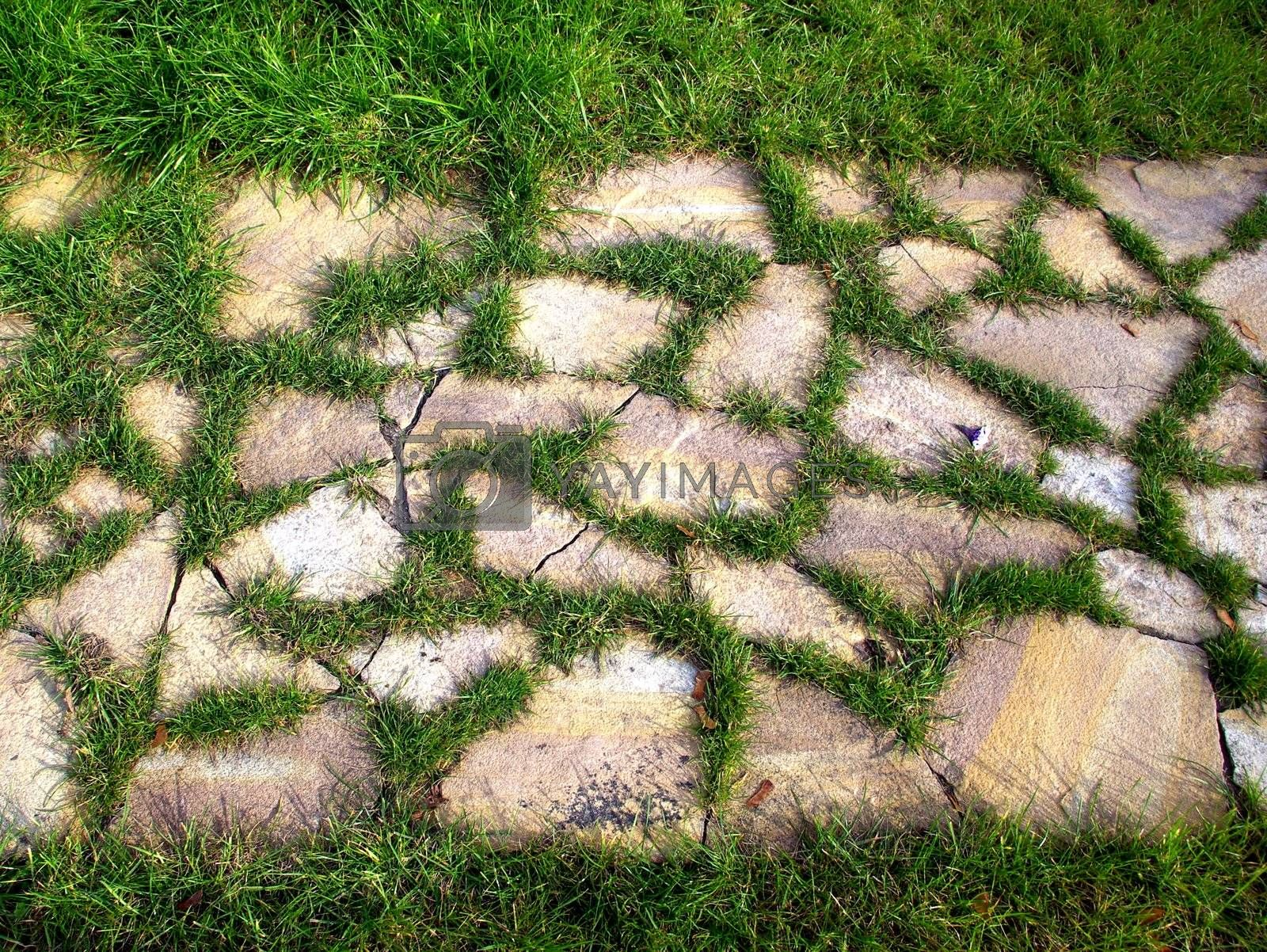 A path is laid out from a stone
