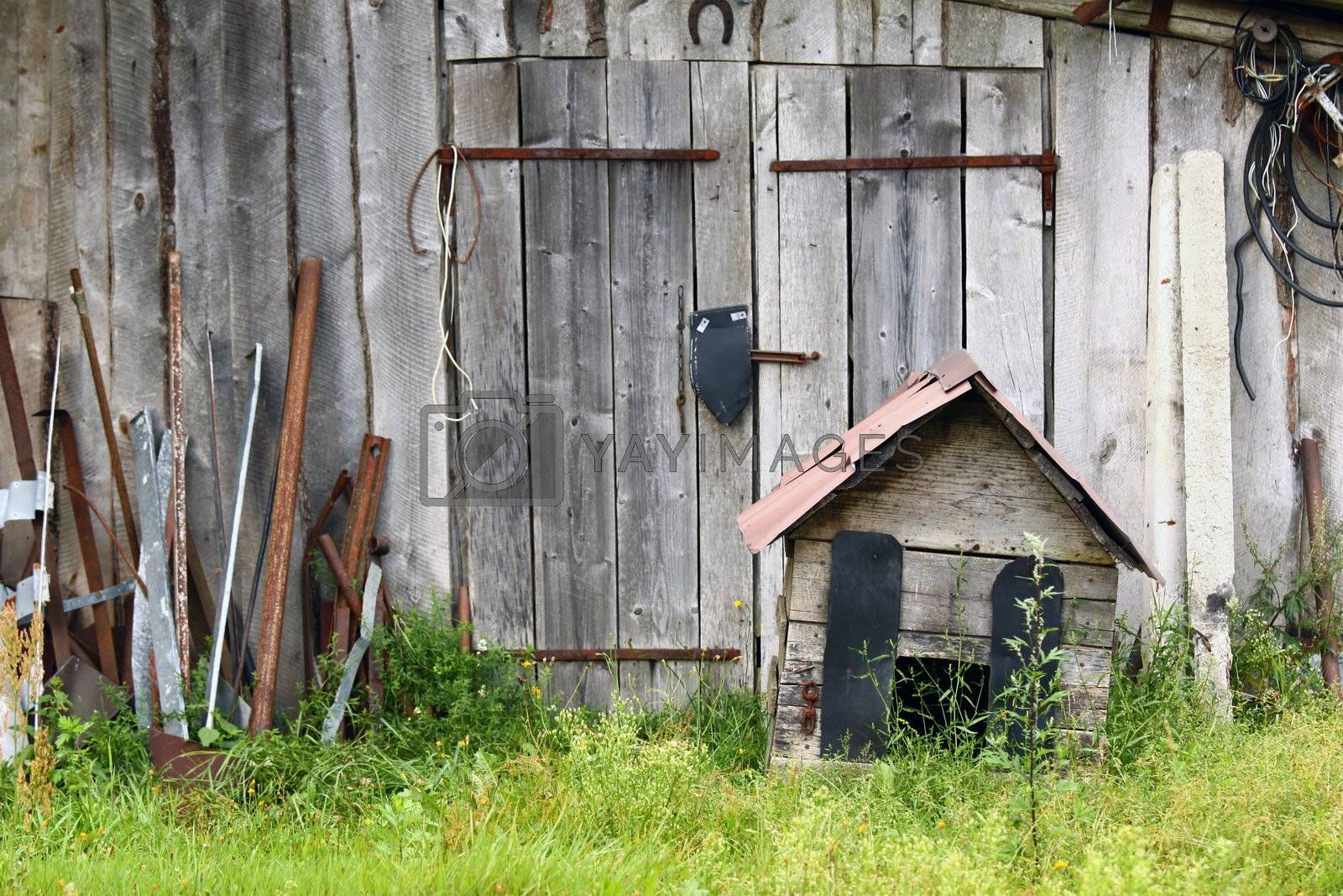 Old abandoned barn with old rusty kennel