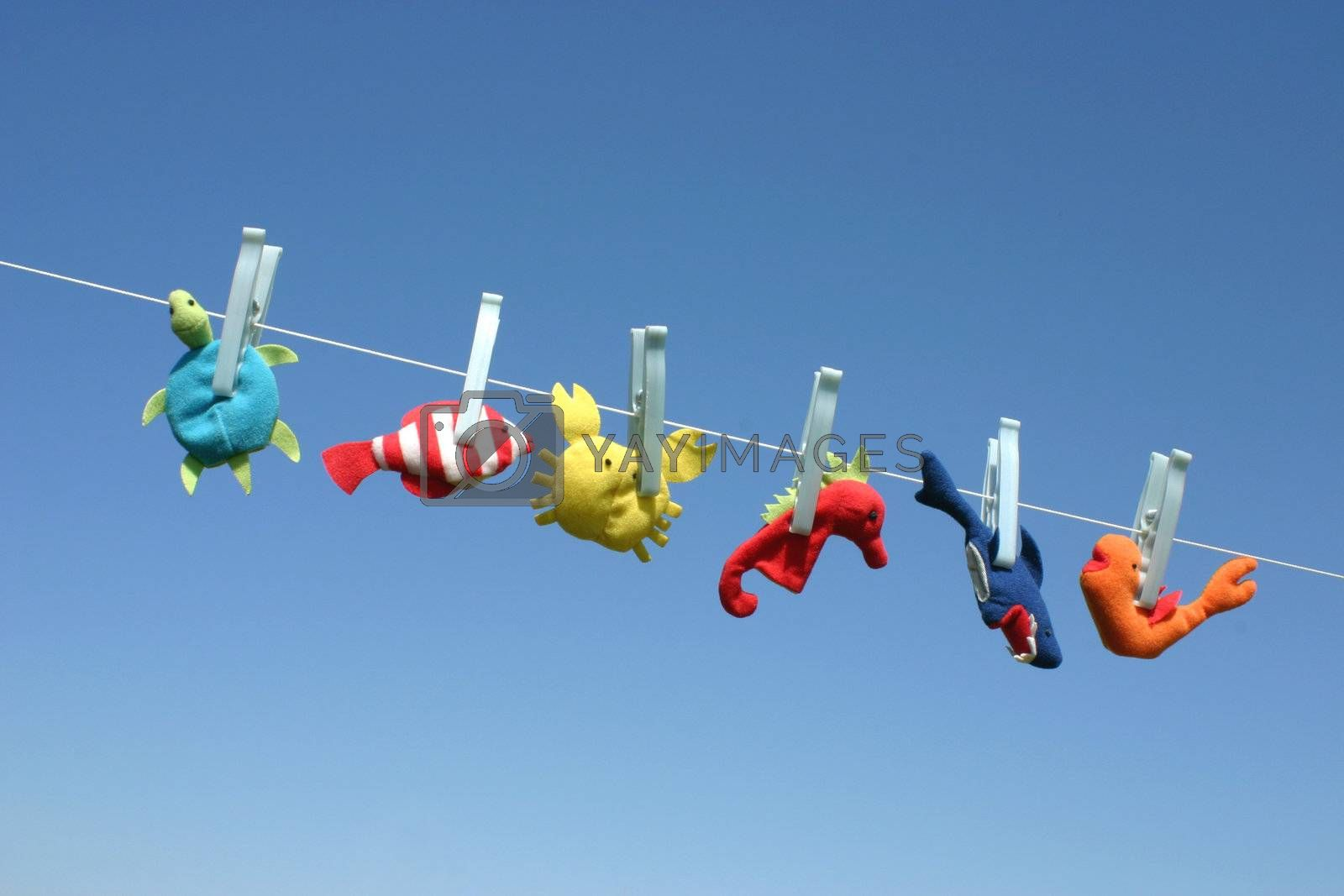 Colorful sea animal toys hanging on the laundry wire against blue sky and drying