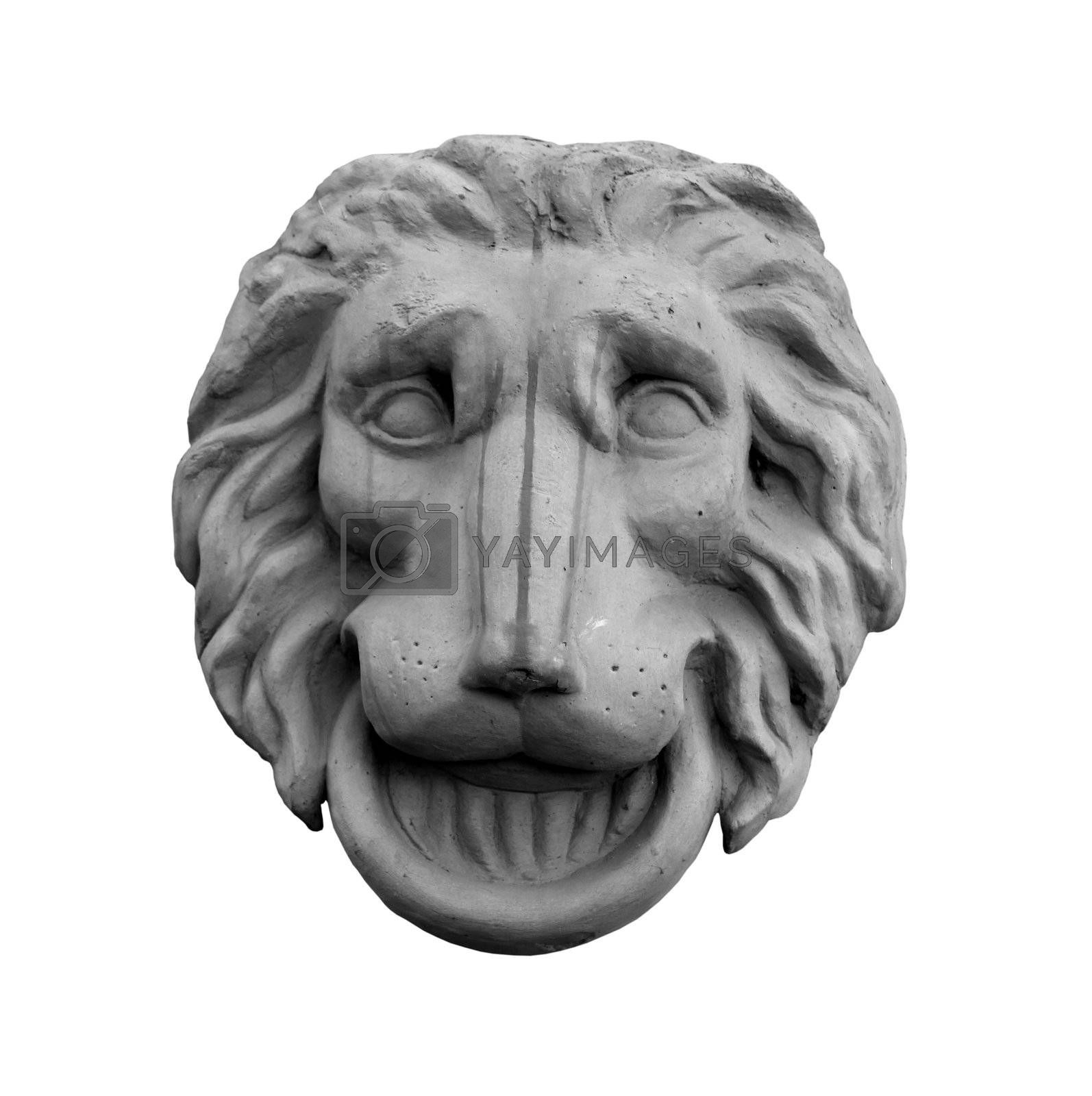 Bas-relief of the lion head isolated on white