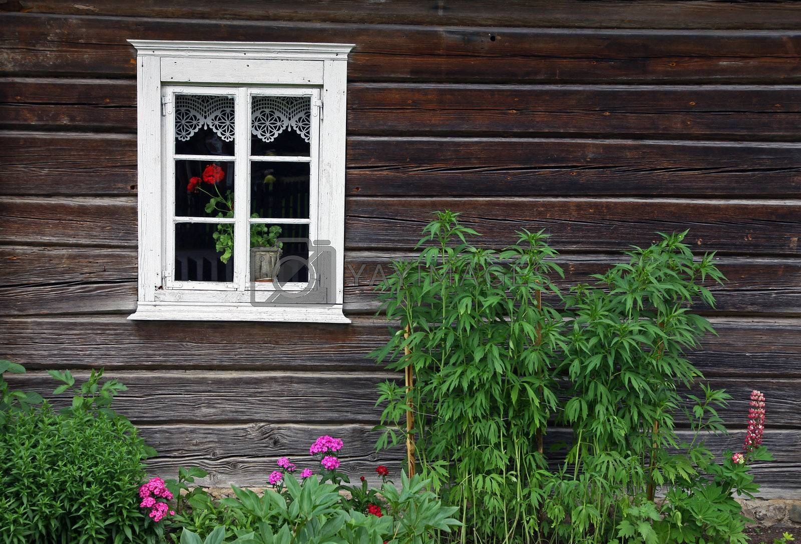 Picture of an old rural house with window and flowers