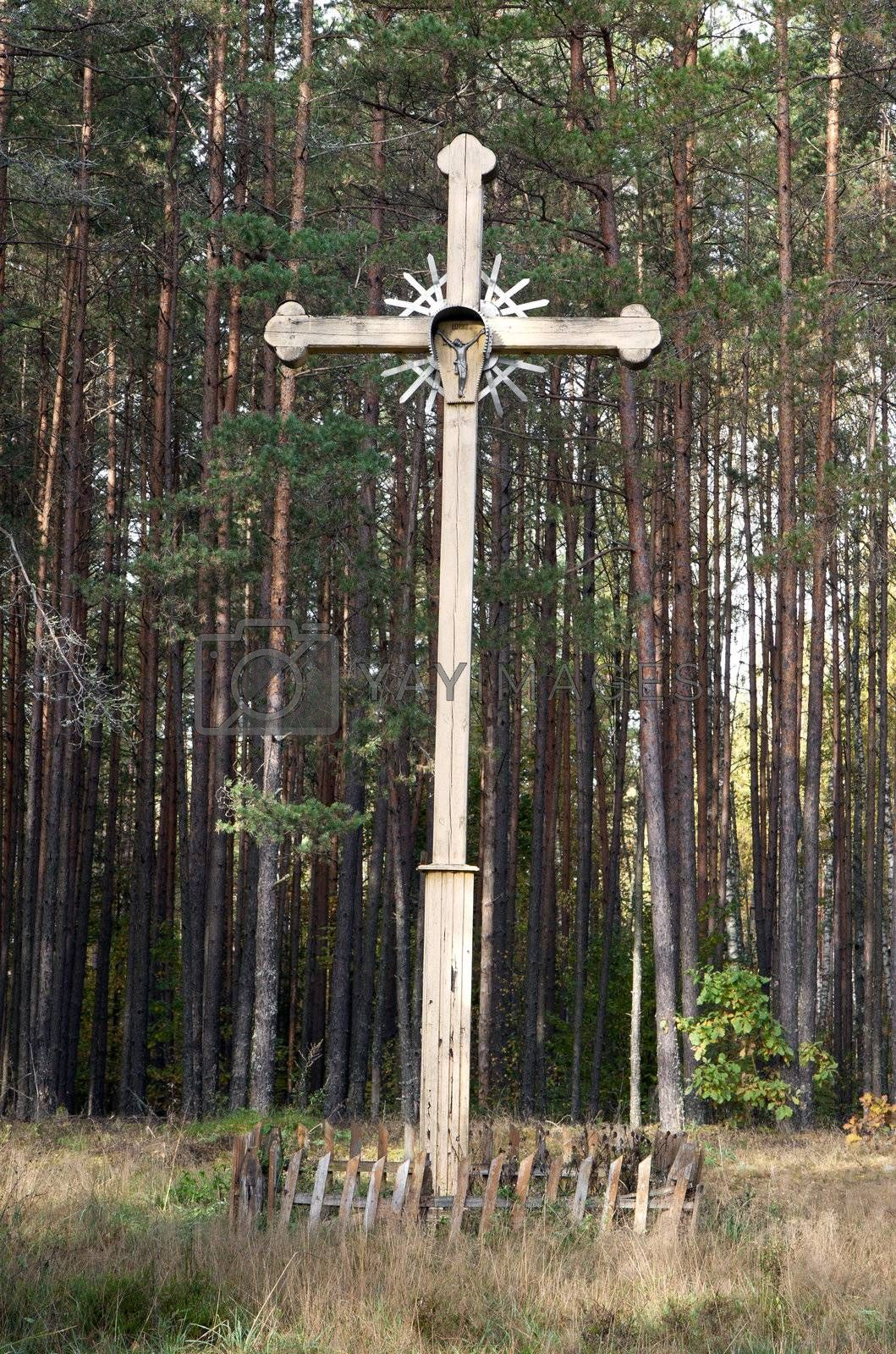Old wooden abandoned cross in the middle of the woods