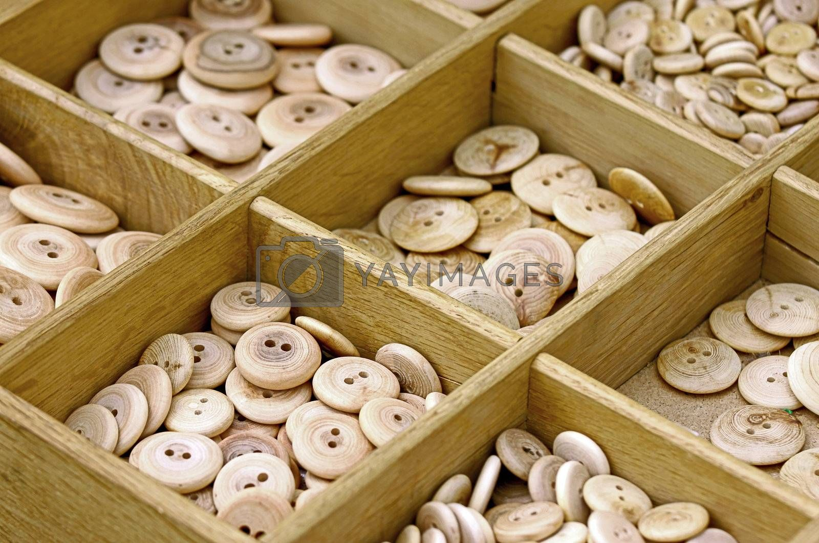 Wooden all alike buttons in wooden box