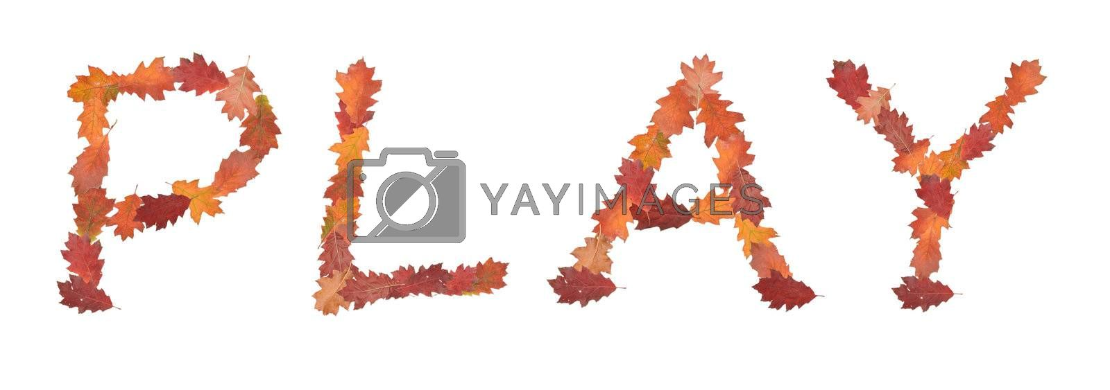 word play made of autumn leaves for game on white background