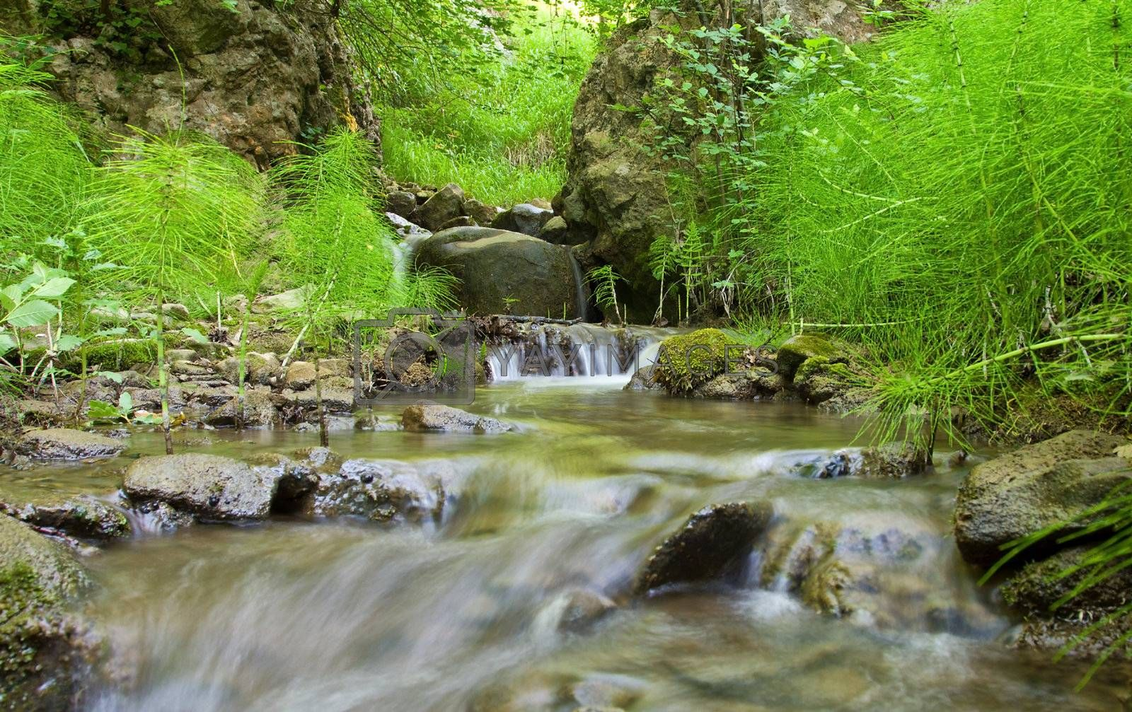 beautiful waterfall on small forest stream