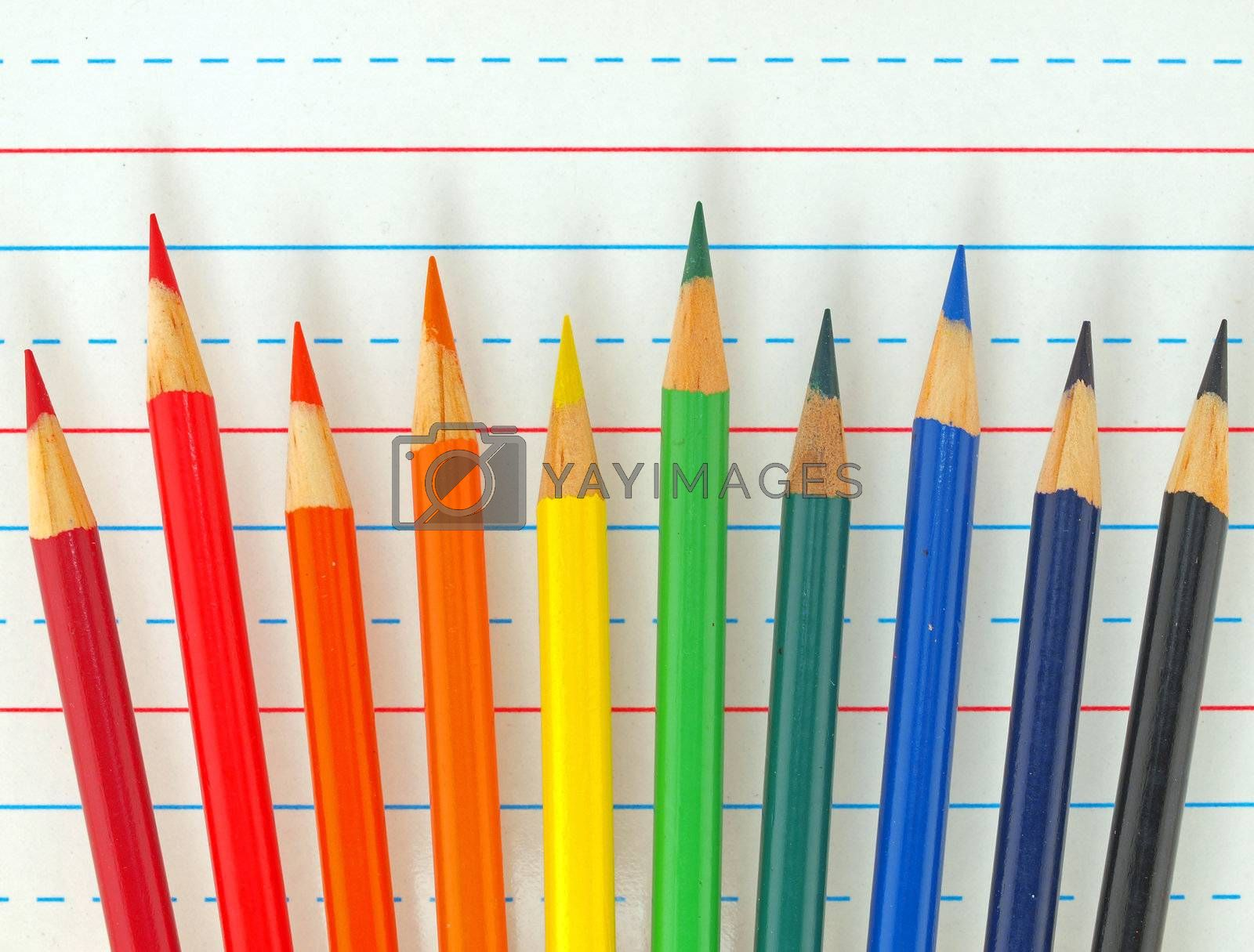 Rainbow of Colored Pencils Isolated on Lined Paper