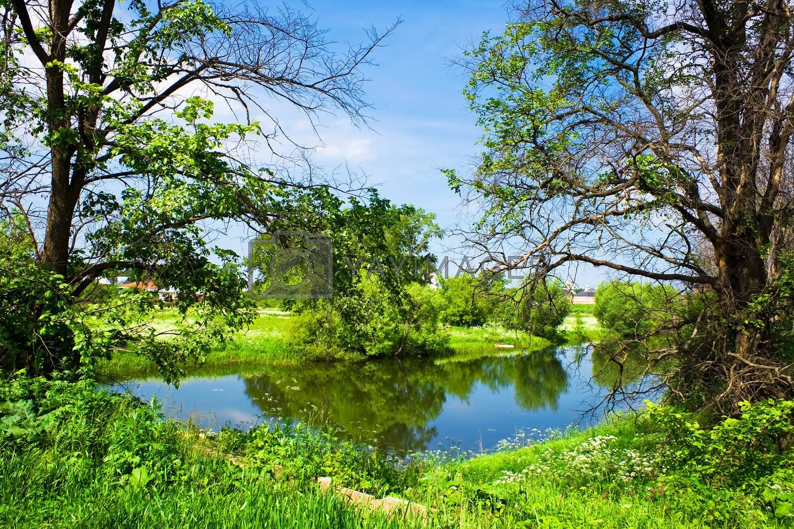 Trees and river in Suzdal, Russia