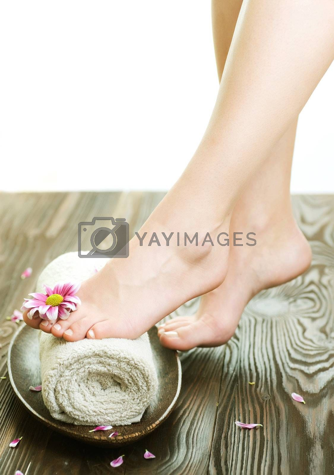 Spa Concept. Beautiful Woman Legs With Flower  by Subbotina Anna