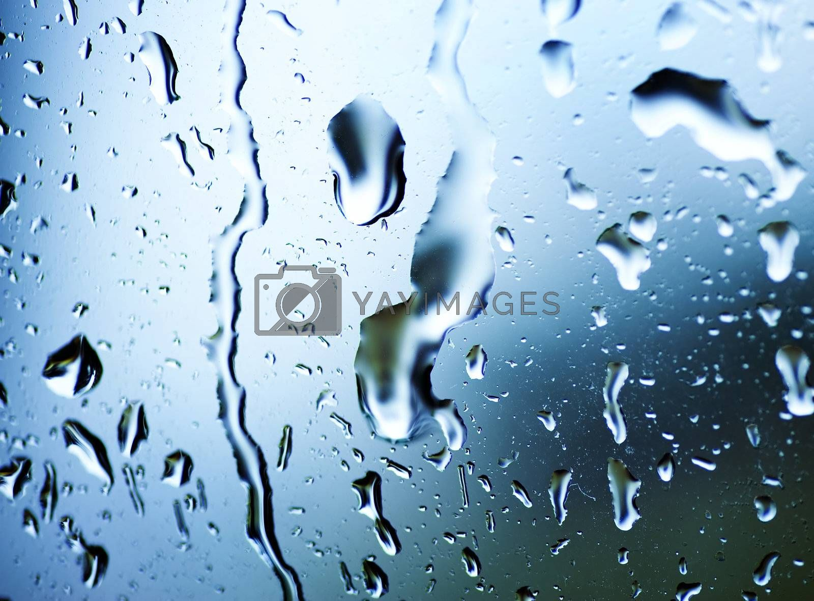Wet Window With A Rain Drops by Subbotina Anna