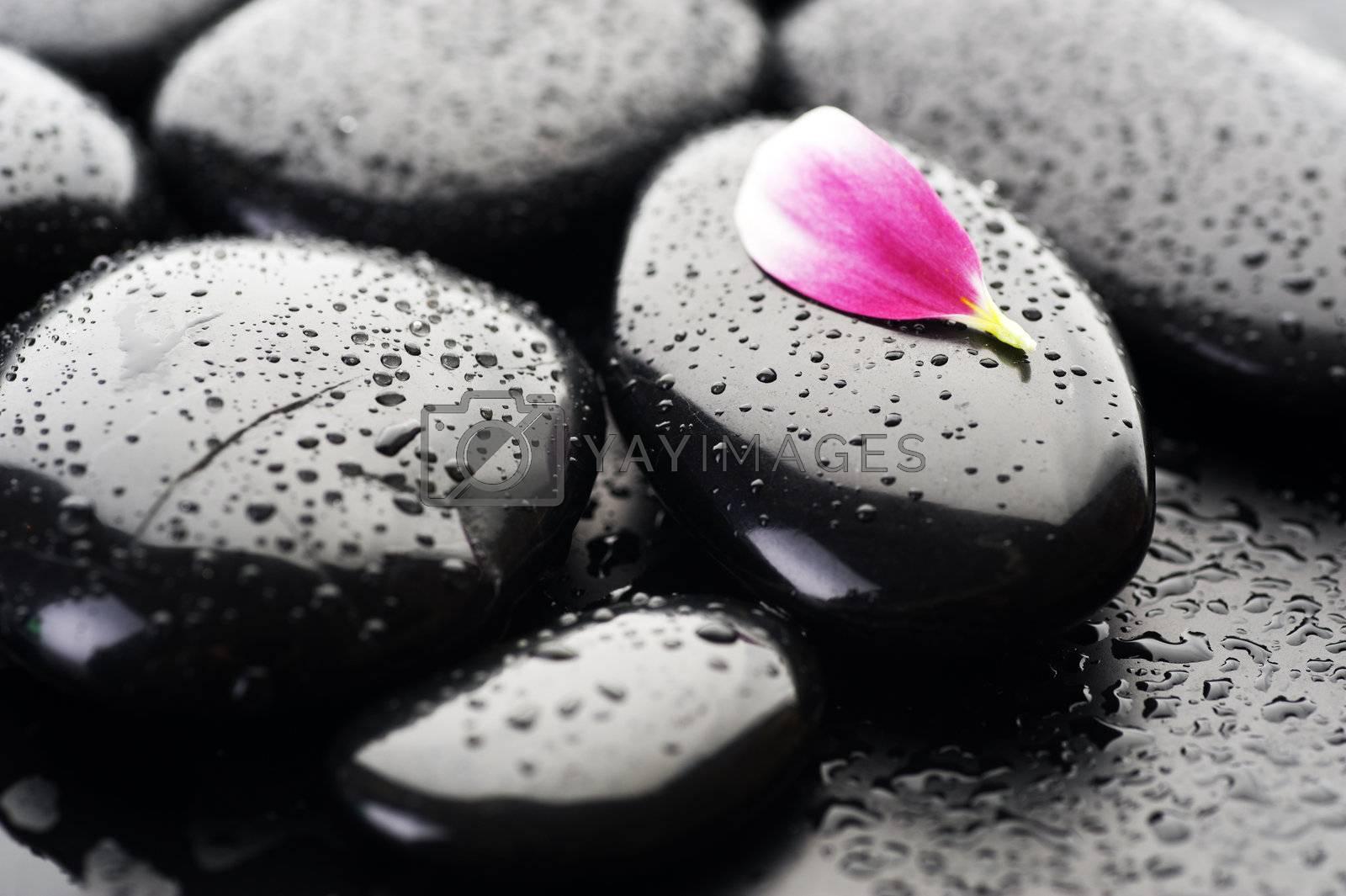 Spa Wet Stones Closeup  by Subbotina Anna