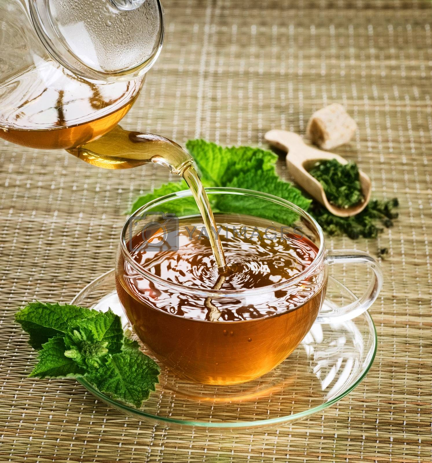 Healthy Tea by Subbotina Anna