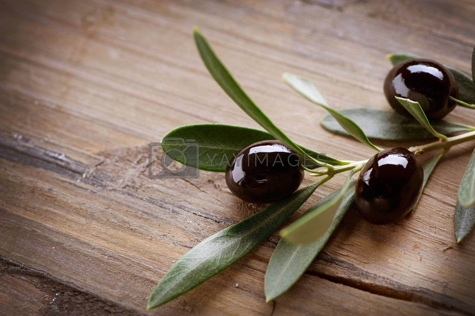 Olive over Wood Background by Subbotina Anna