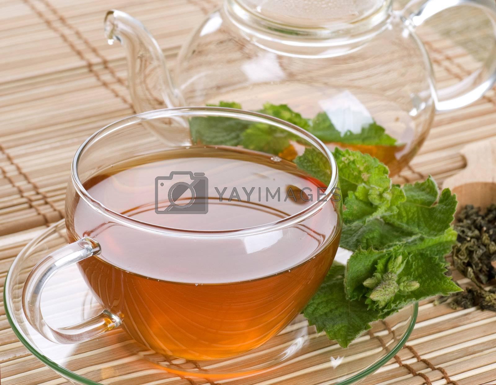 Healthy Tea With Mint  by Subbotina Anna