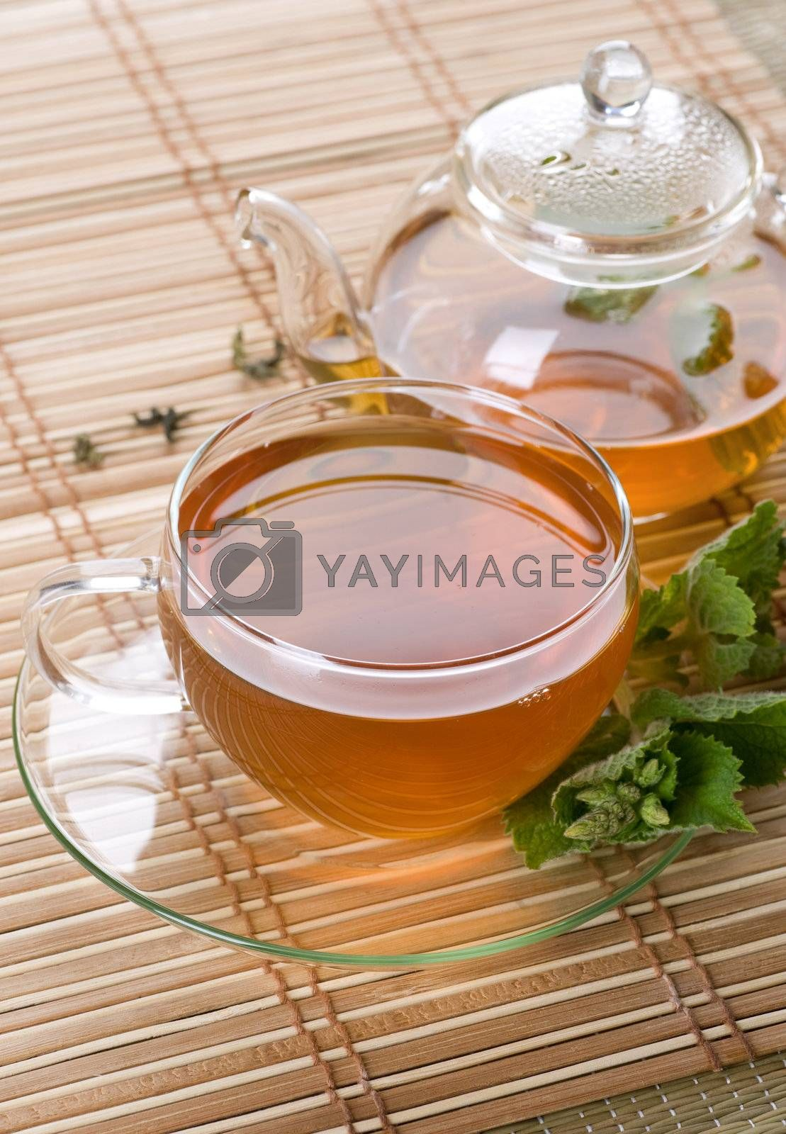 Healthy Mint Tea by Subbotina Anna